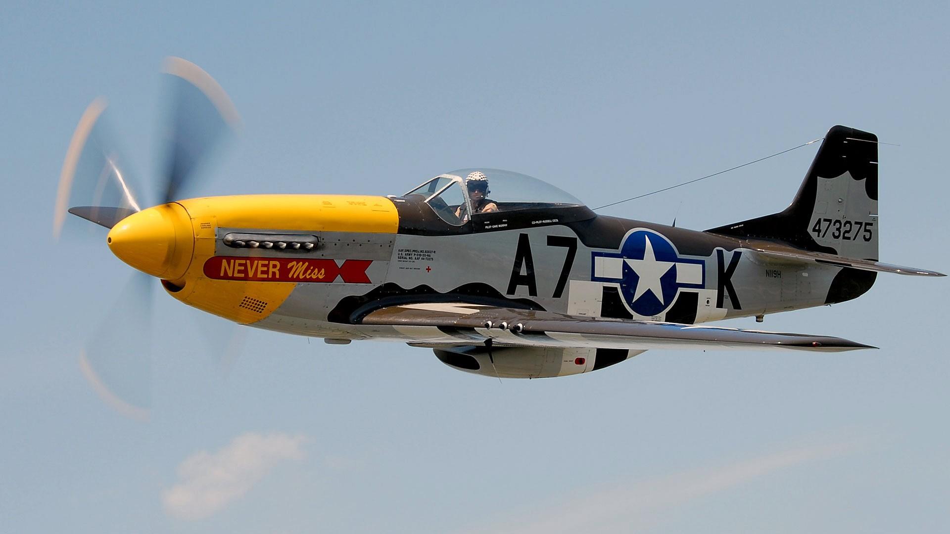 P-51 Mustang Warbird aircraft