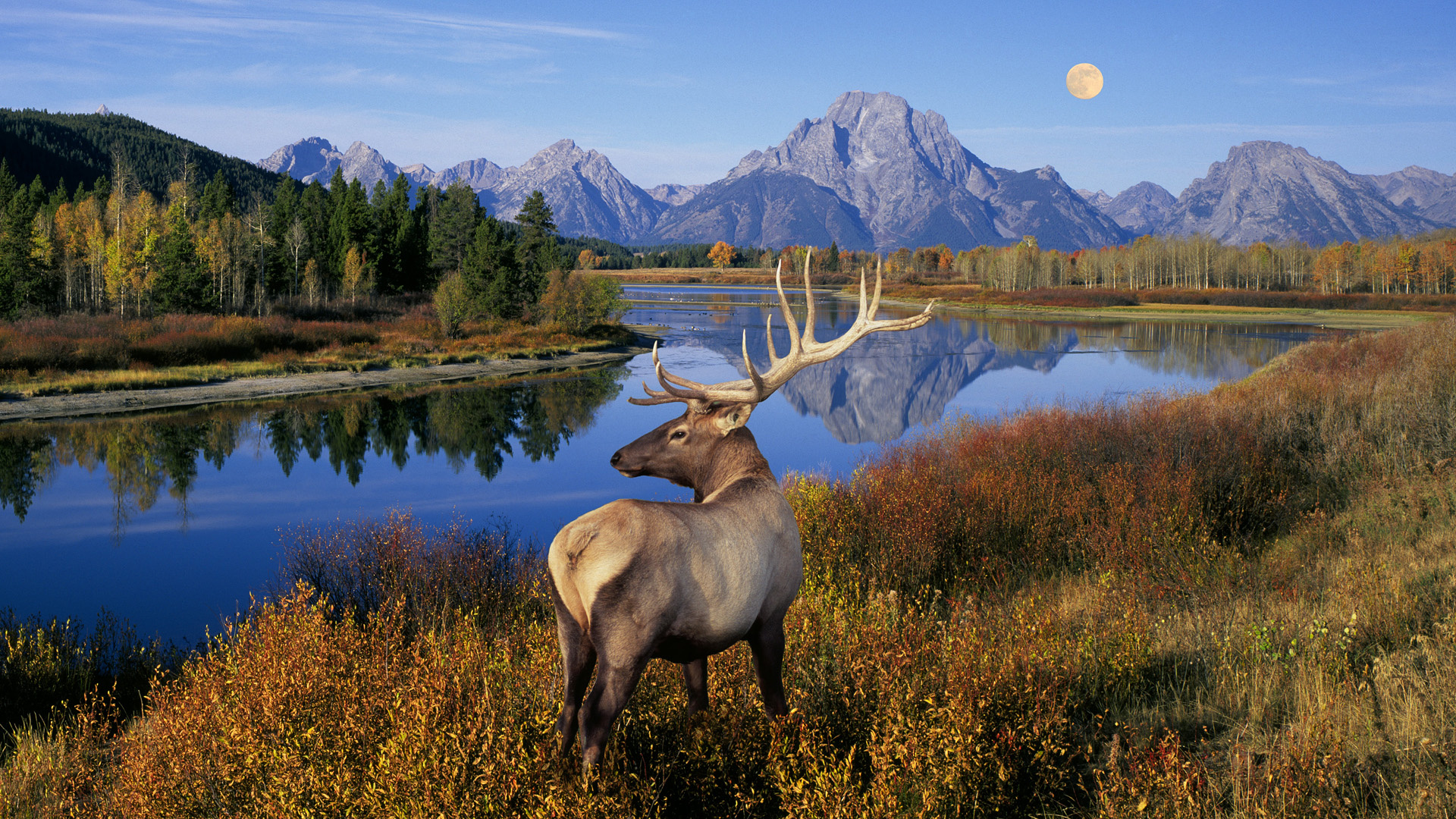 ... Grand Teton National Park ...