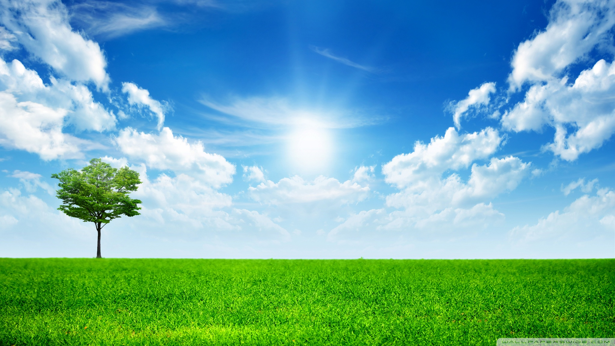 Free Green Nature Wallpapers Hd Pictures 4 HD Wallpapers