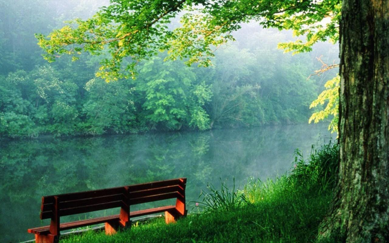 Beauty-of-nature-random-4884759-1280-800.jpg