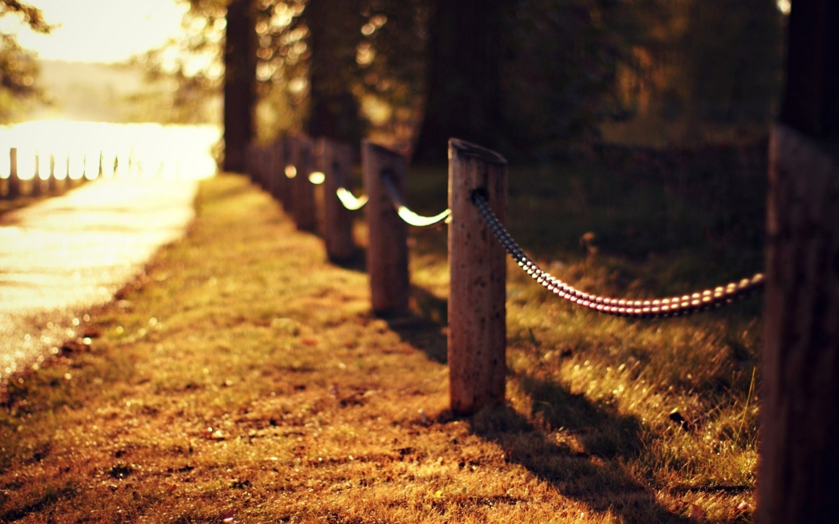 Road Grass Fence Nature Autumn