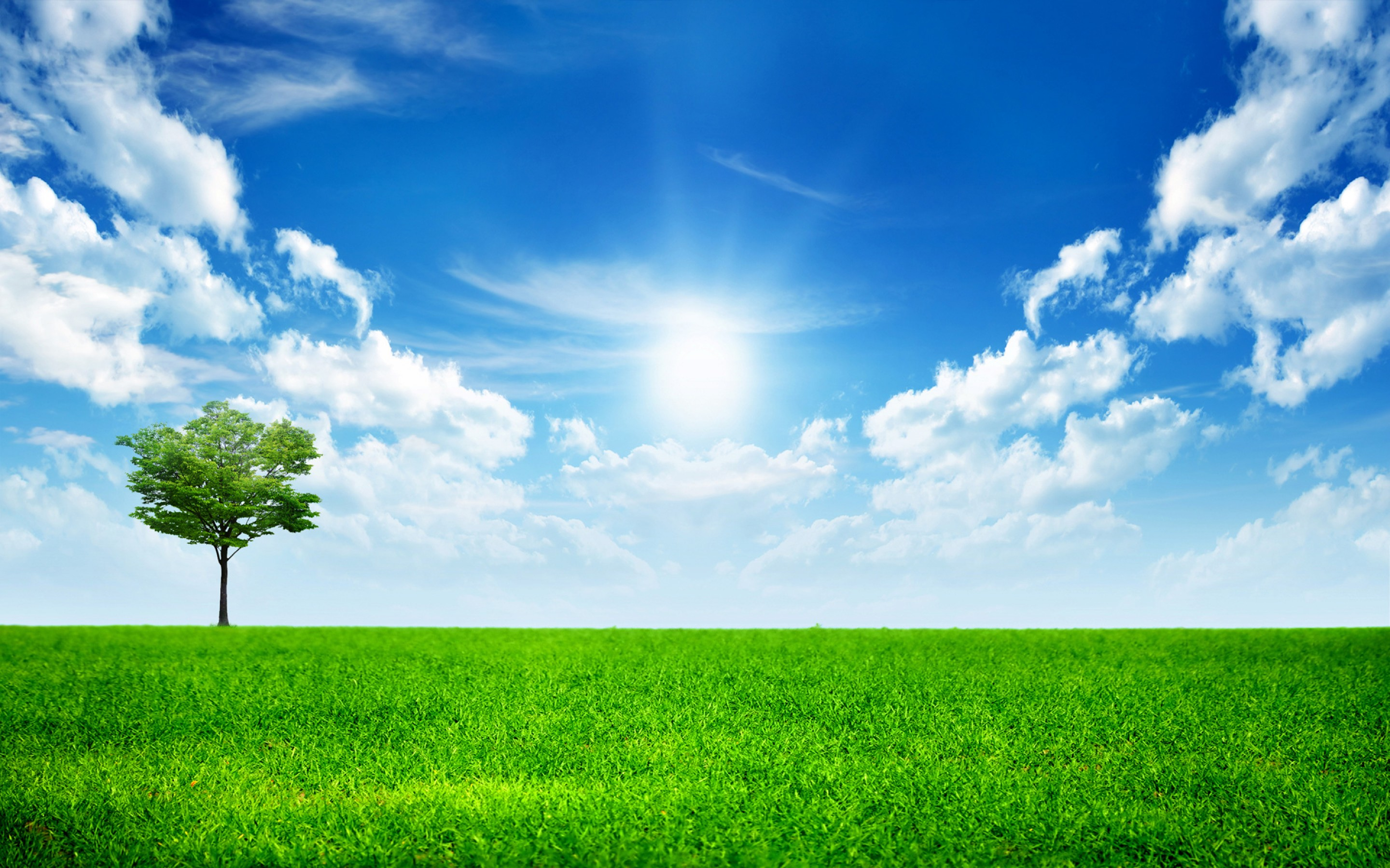 Nature Background images6