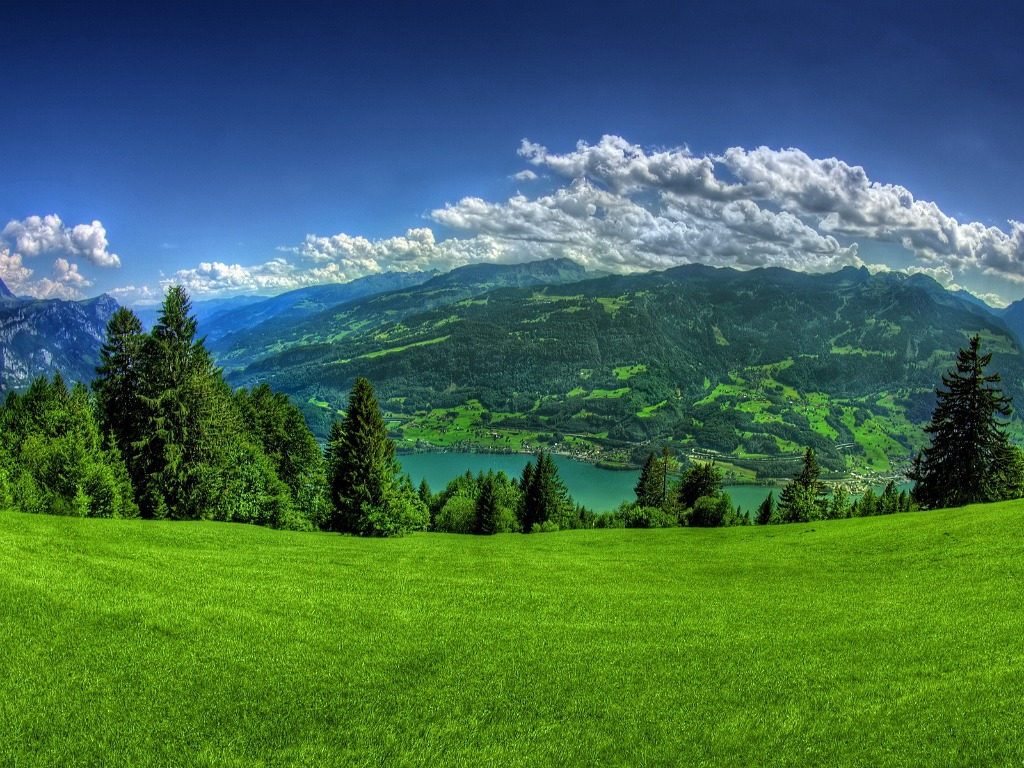 Nature Background Images For Desktop 14 Thumb