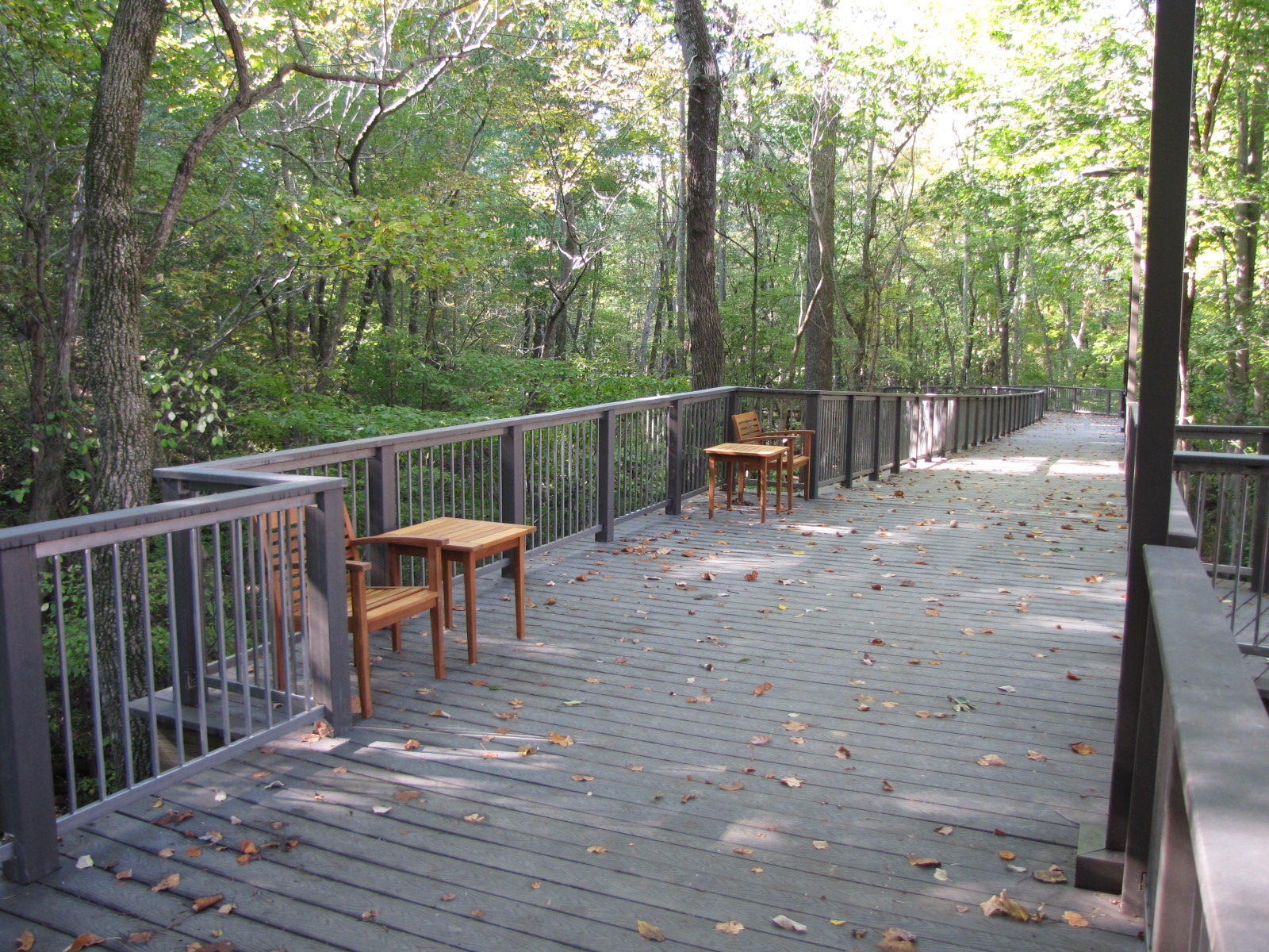 ... In addition to the boardwalk construction, Nature Bridges installed approximately 1,064 lineal feet of custom