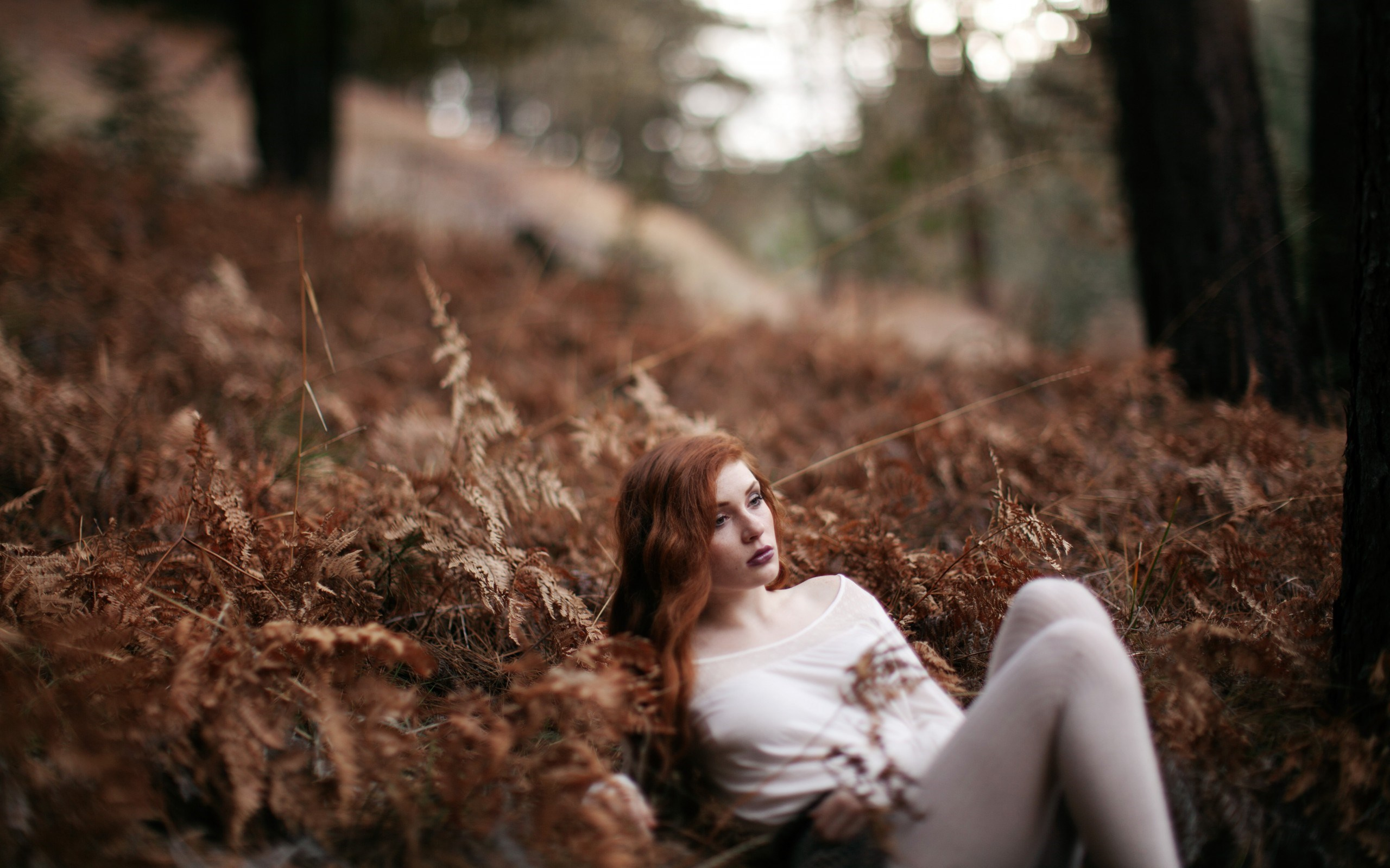 Nature Forest Redhead Girl Photo