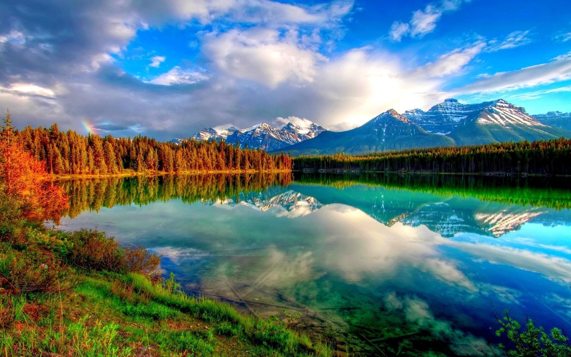 nature. nature1