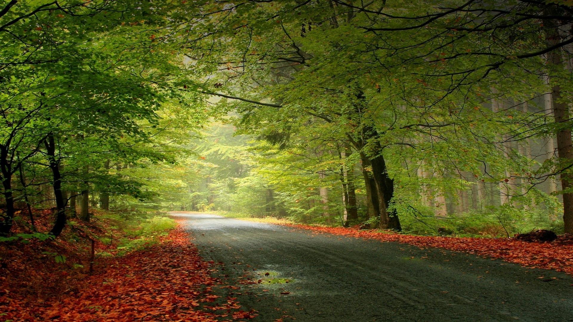 6-autumn-nature-sandbox-images_2053316.jpg
