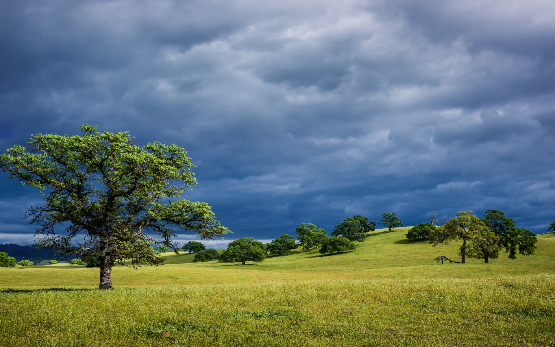 Nature stormbreak landscape