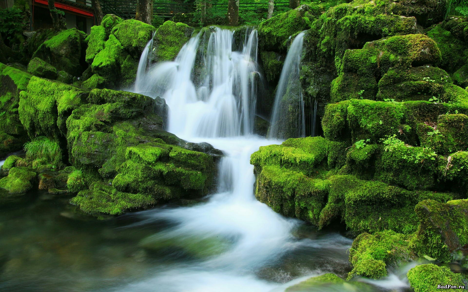 Wallpaper Nature Waterfall Rocks Moss Pictures