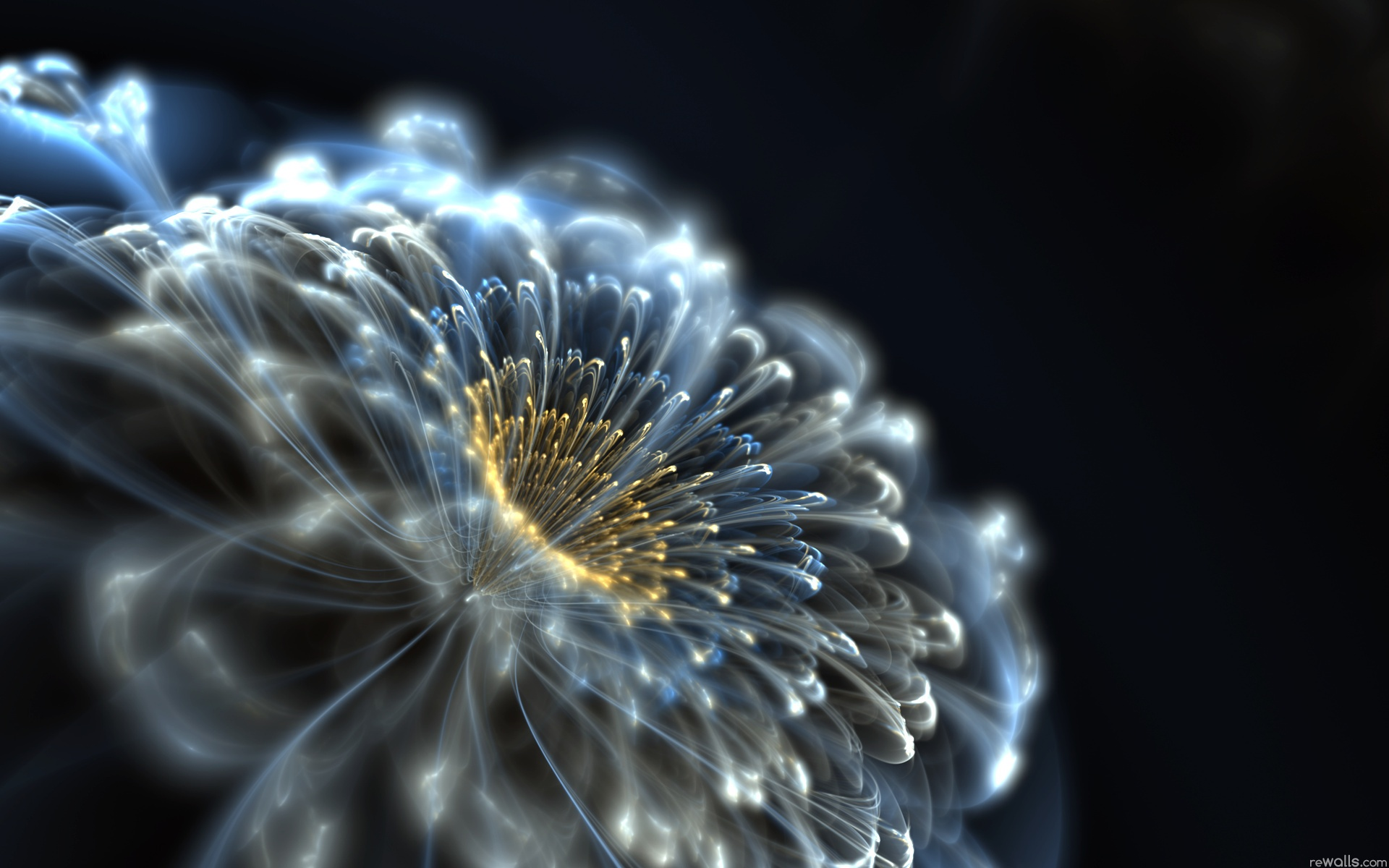 Abstract neon flower Wallpapers Pictures Photos Images