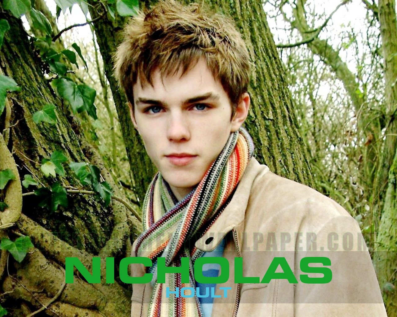 Nicholas Hoult Cute Wallpaper 7 For Desktop Background