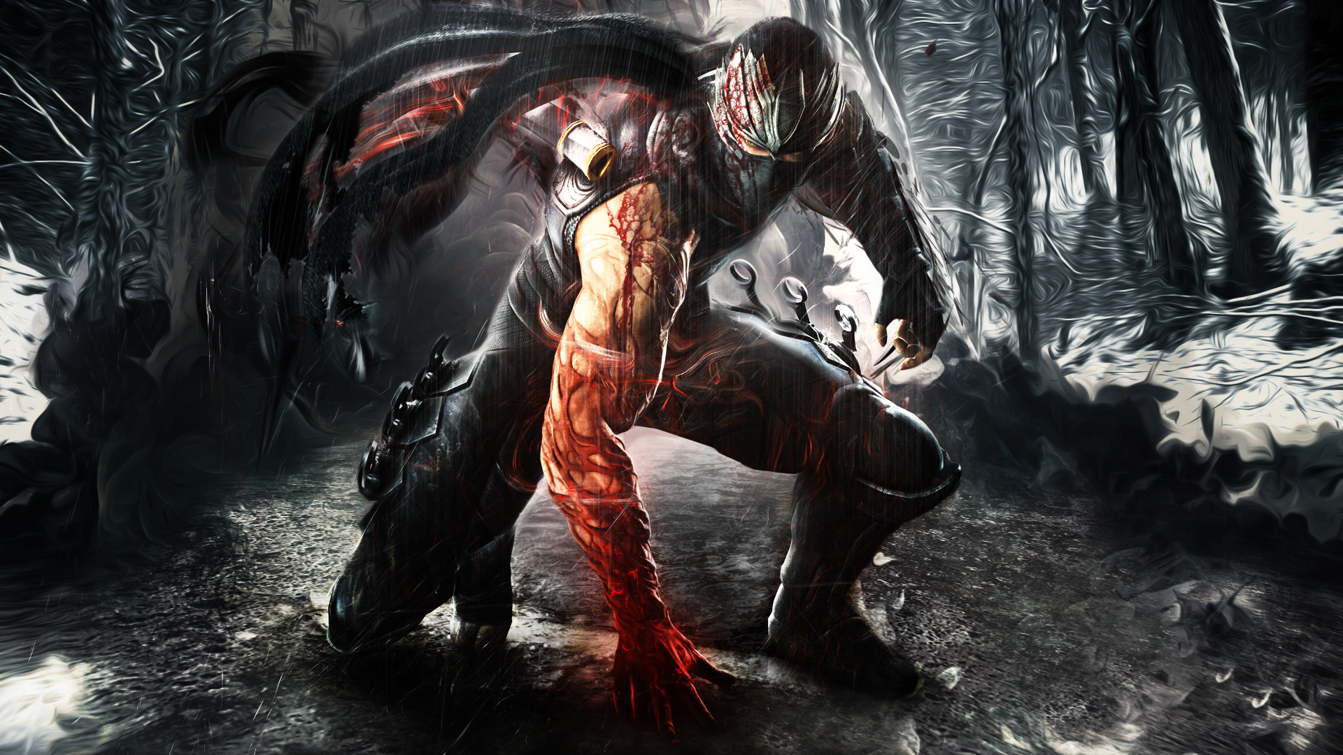 Ninja Gaiden Wallpaper HD