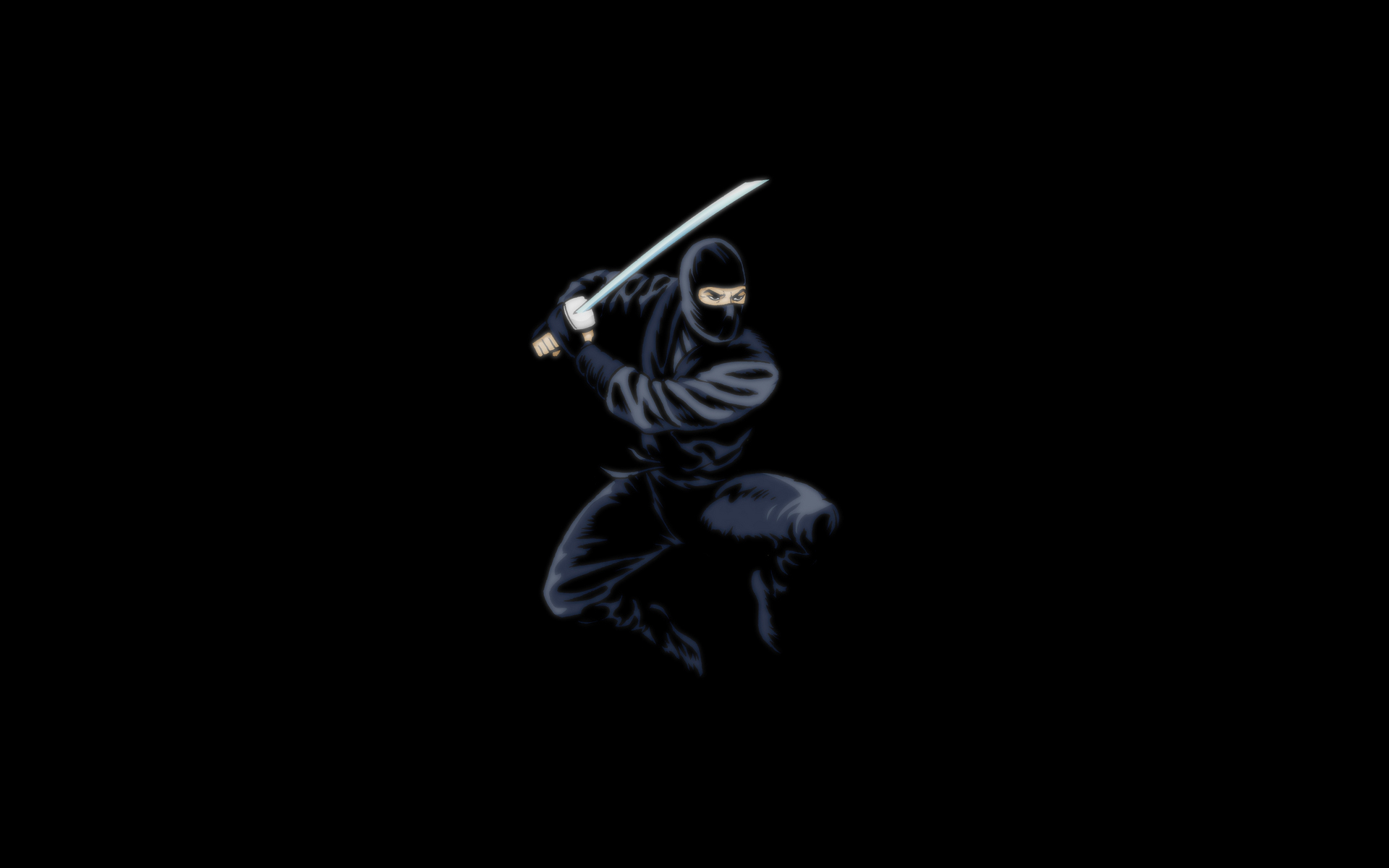 HD Wallpaper   Background ID:447064. 1920x1200 Humor Ninja