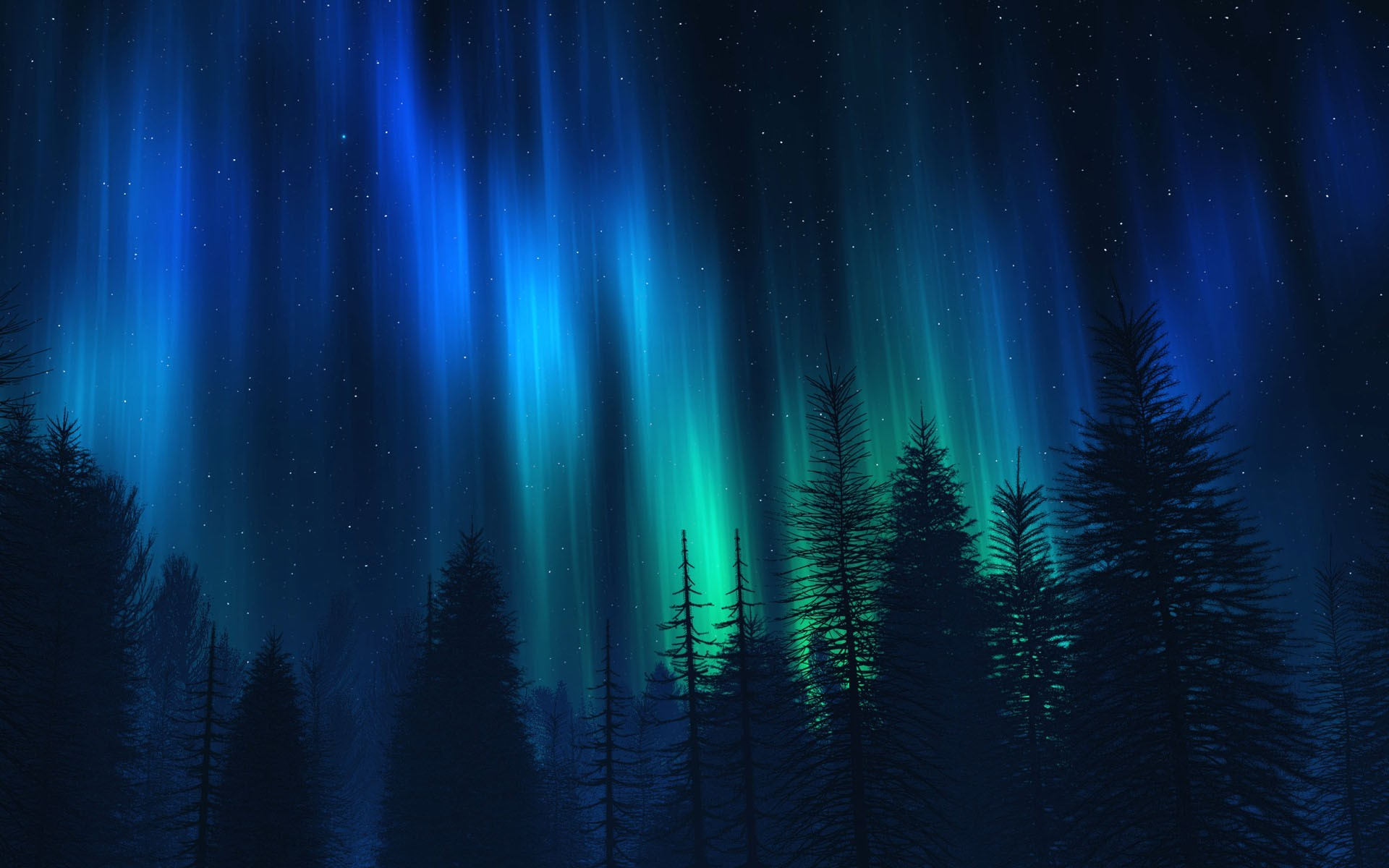 Download Northern lights over fir trees 1920x1200 Wallpaper