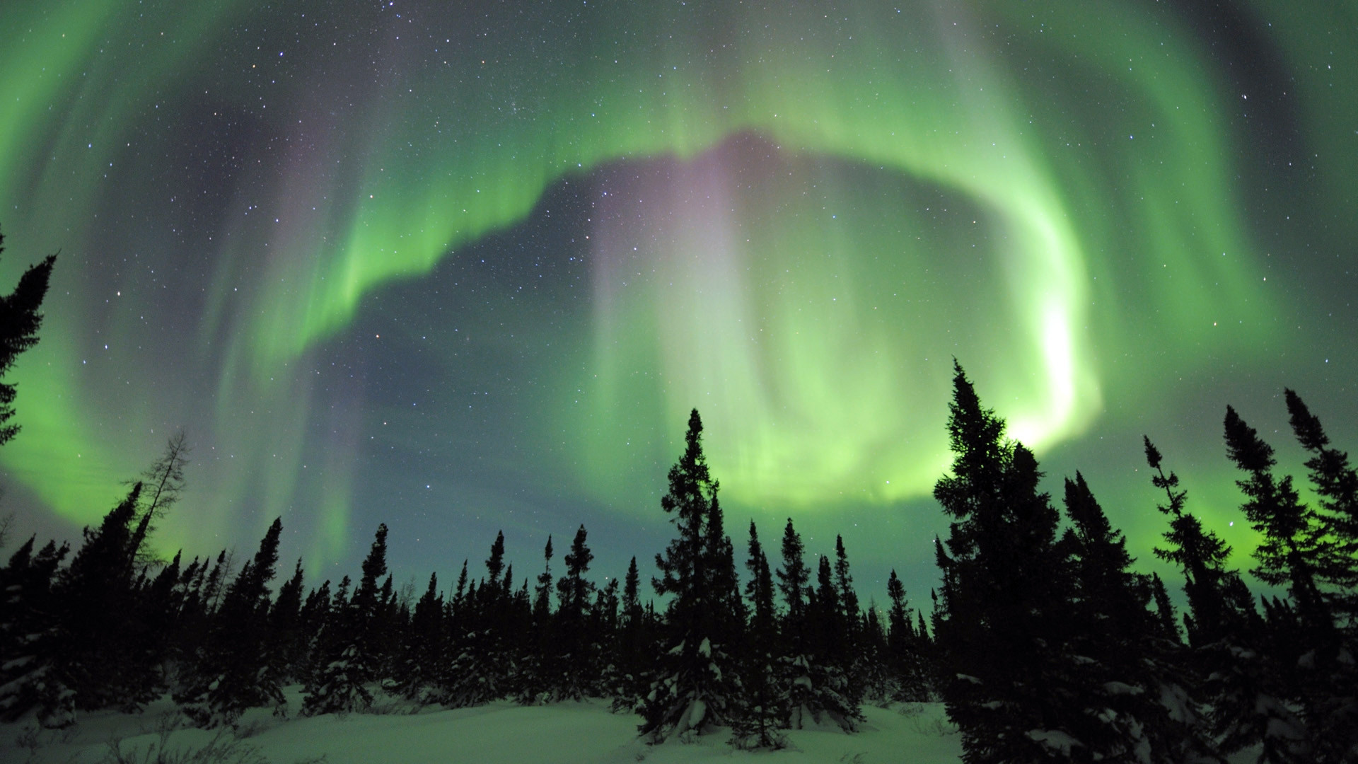 Northern Lights; Northern Lights ...