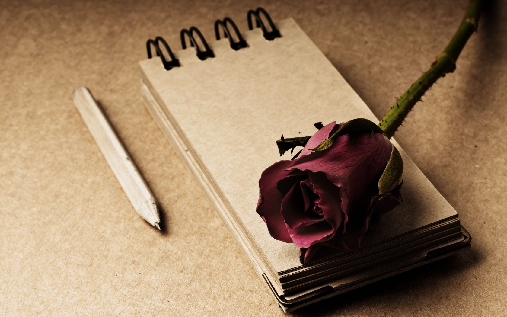 Notepad Flower Rose Red Pencil