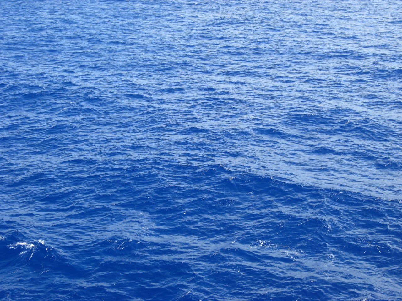 Ocean Water Near Kaua'i