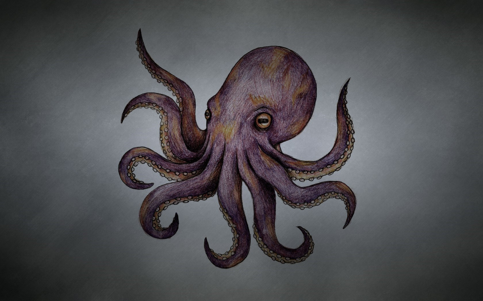 Octopus Tentacles Art