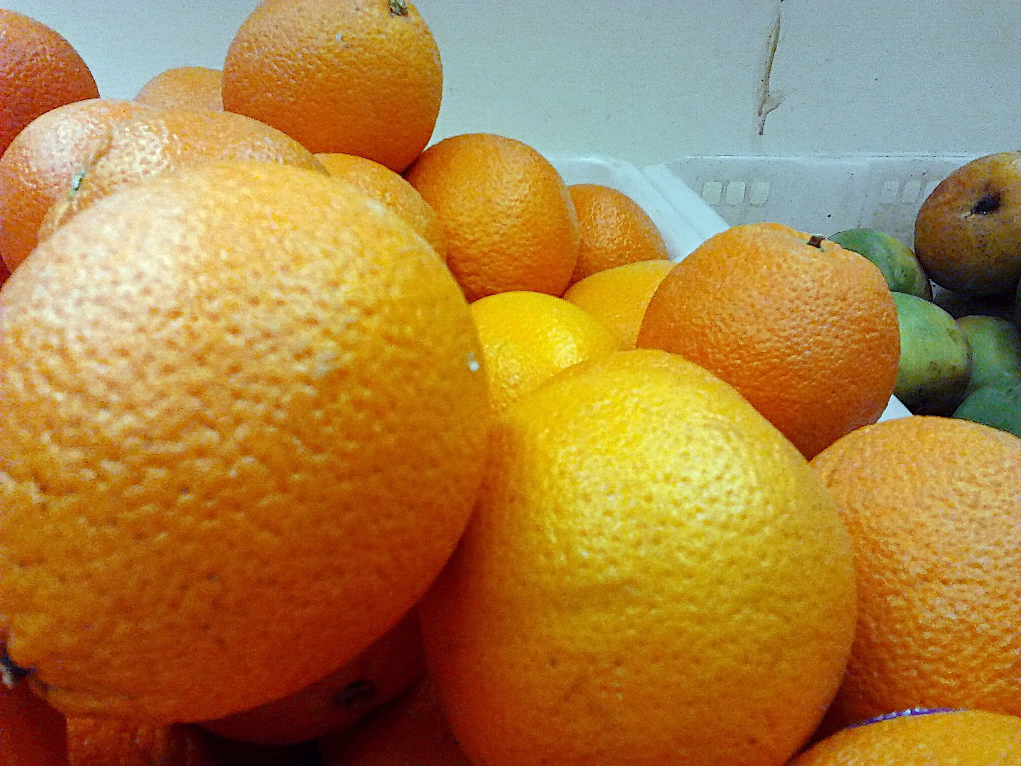 Other varieties of common oranges
