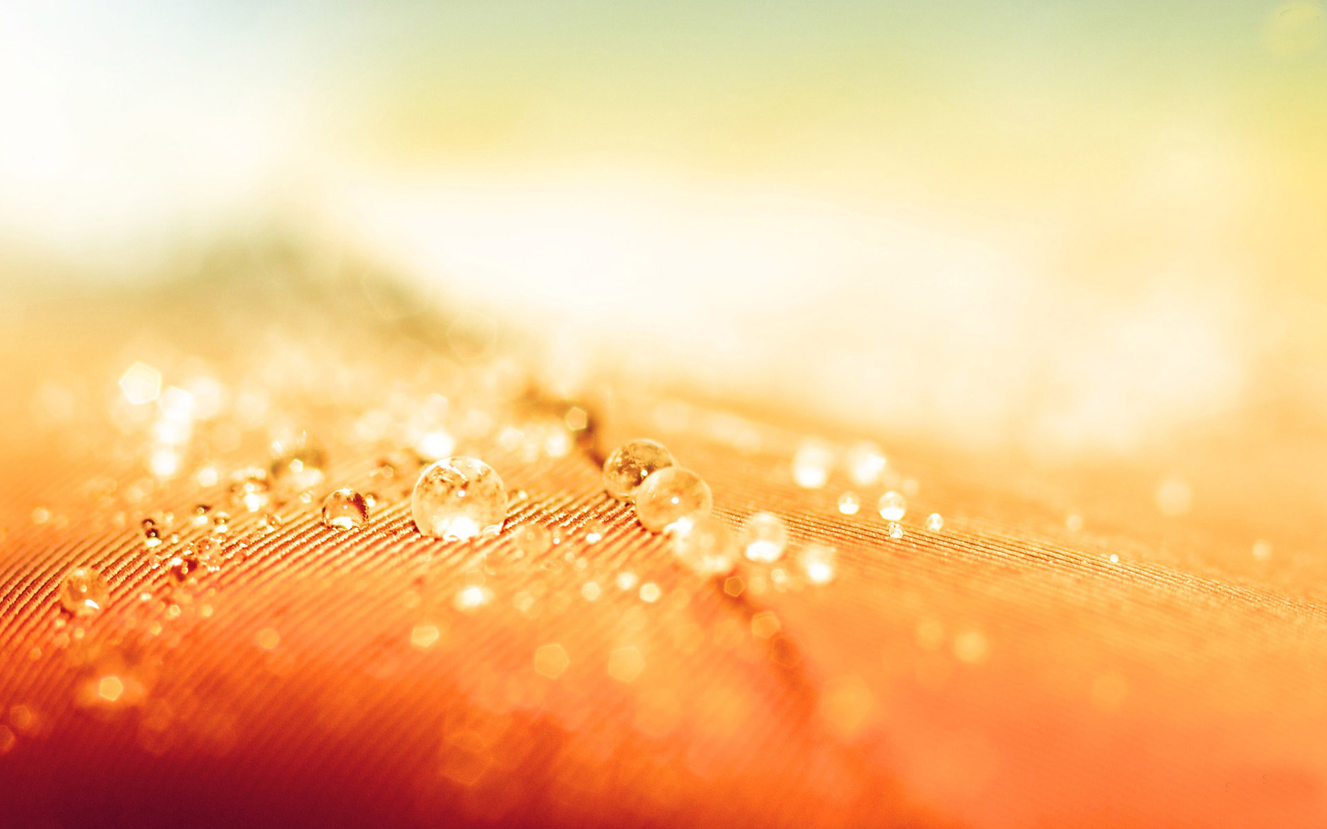 Orange Abstract HD