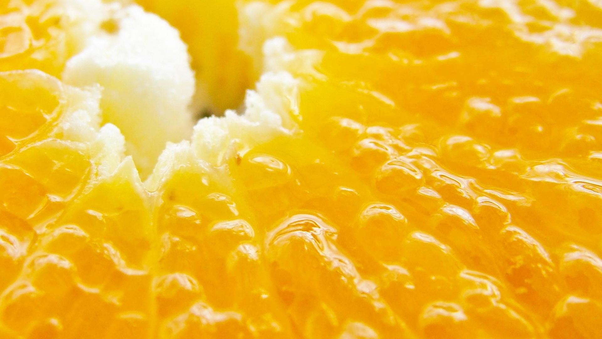 1920x1080 Wallpaper orange, fruit, macro, tasty