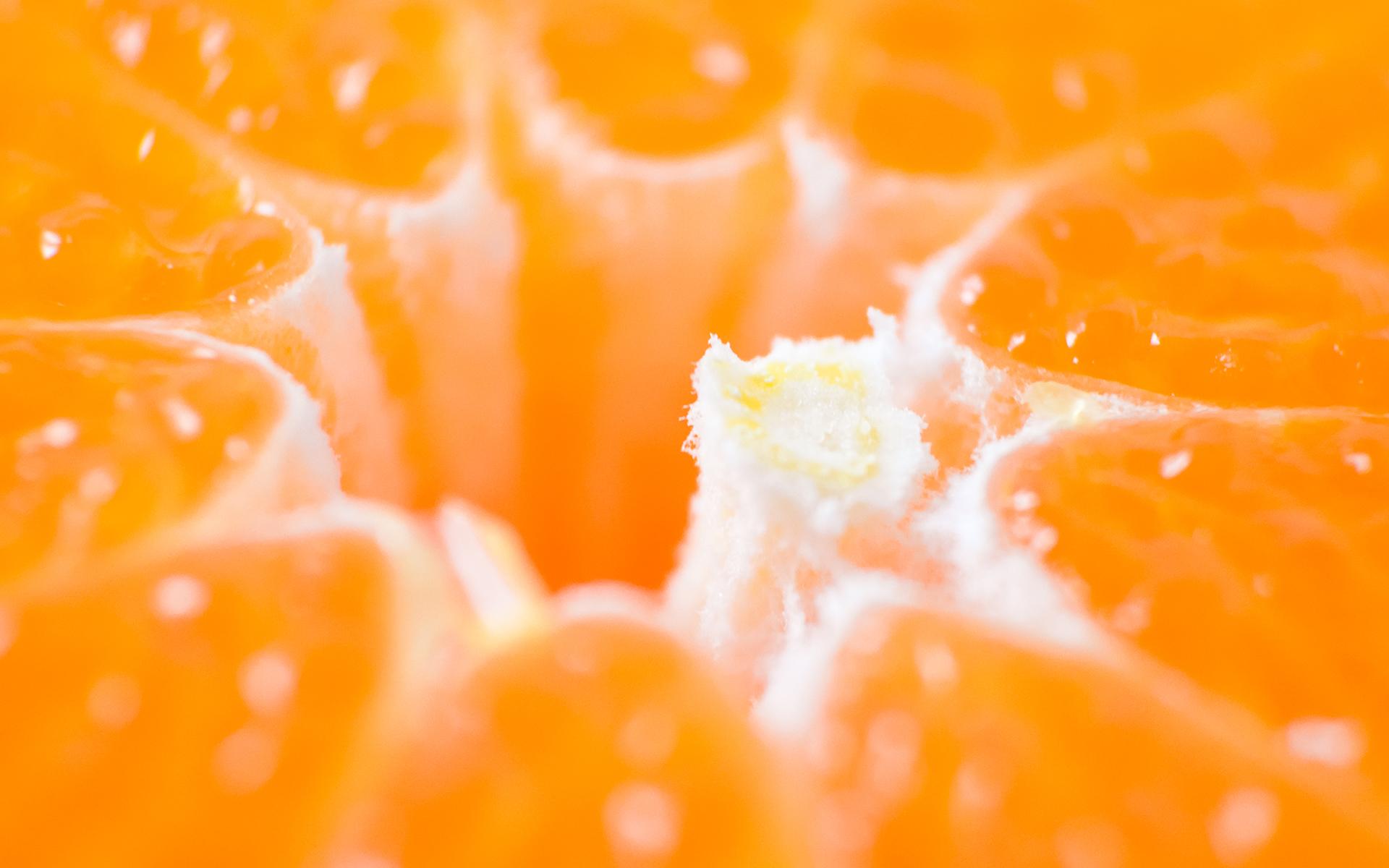 Orange Macro Wallpaper