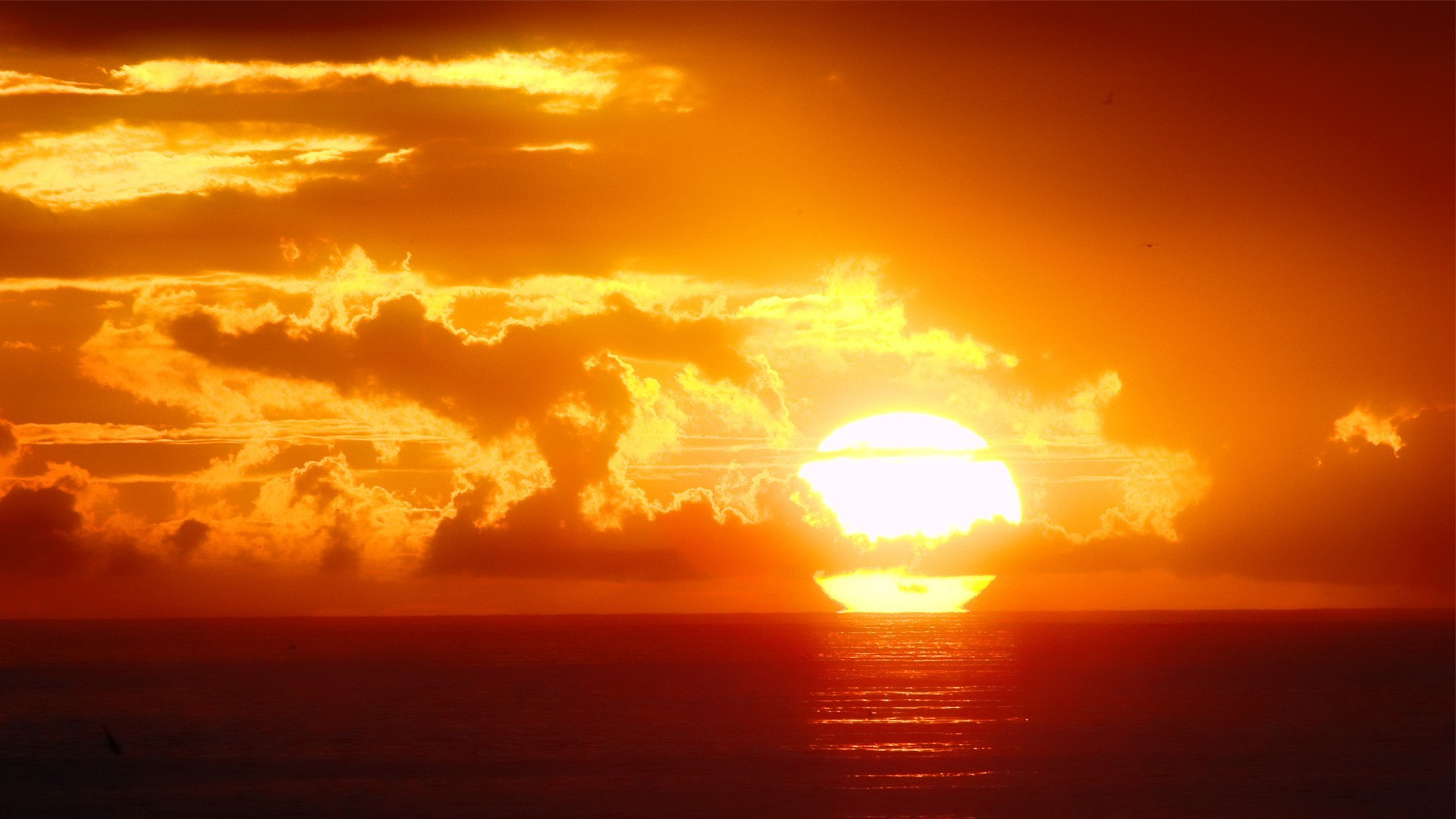 Orange sunset HD Wallpaper