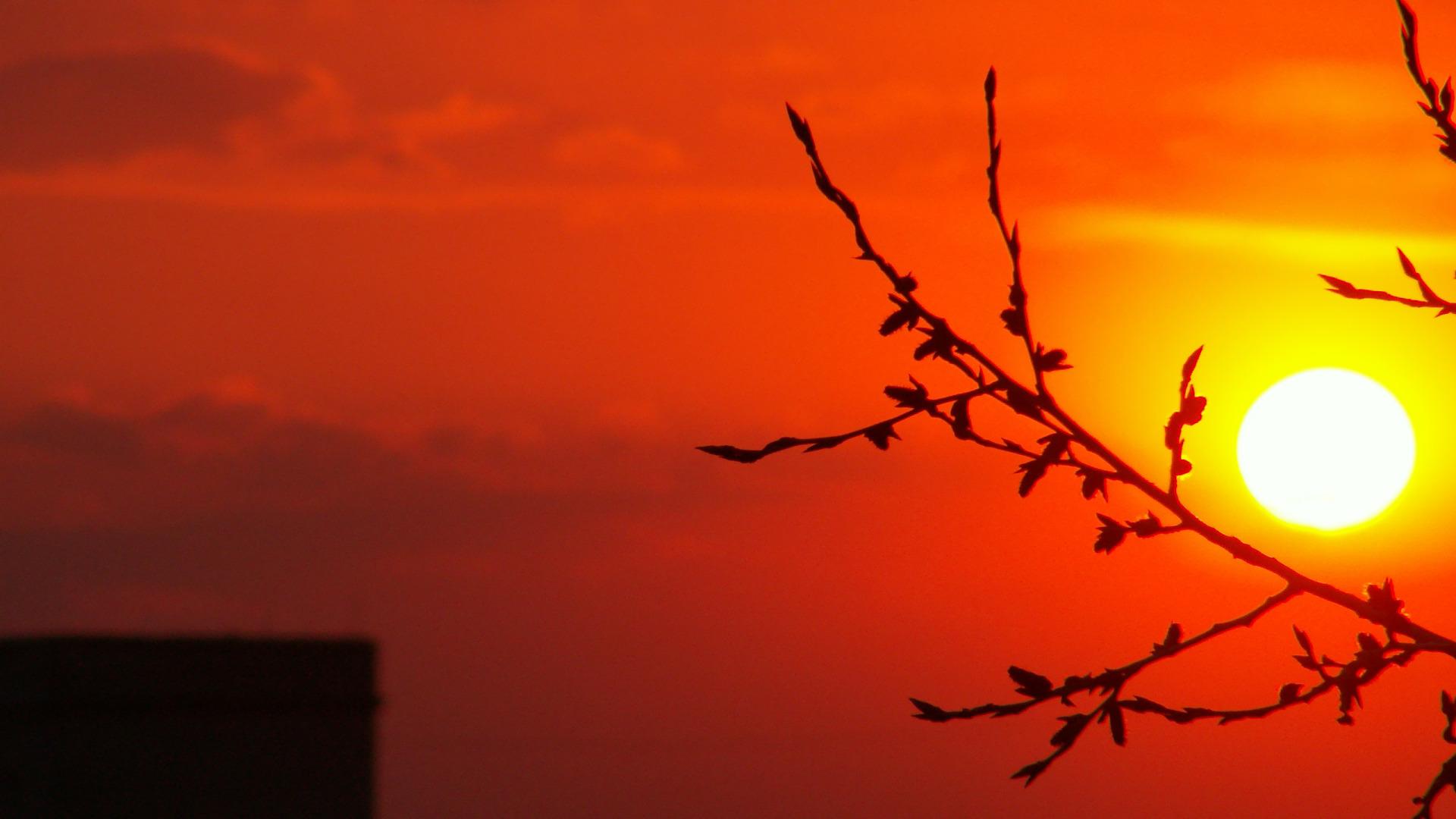 Orange Sunset Wallpaper