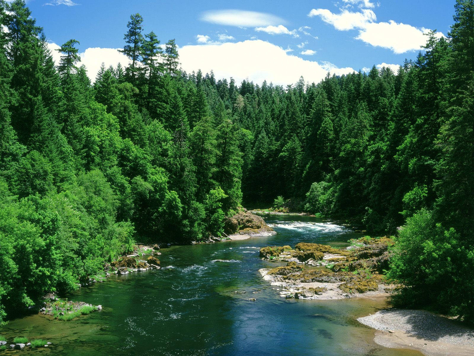 Normal 5:4 resolutions: 1280 x 1024 Original Link. Download Umpqua River Douglas County Oregon Wallpaper ...