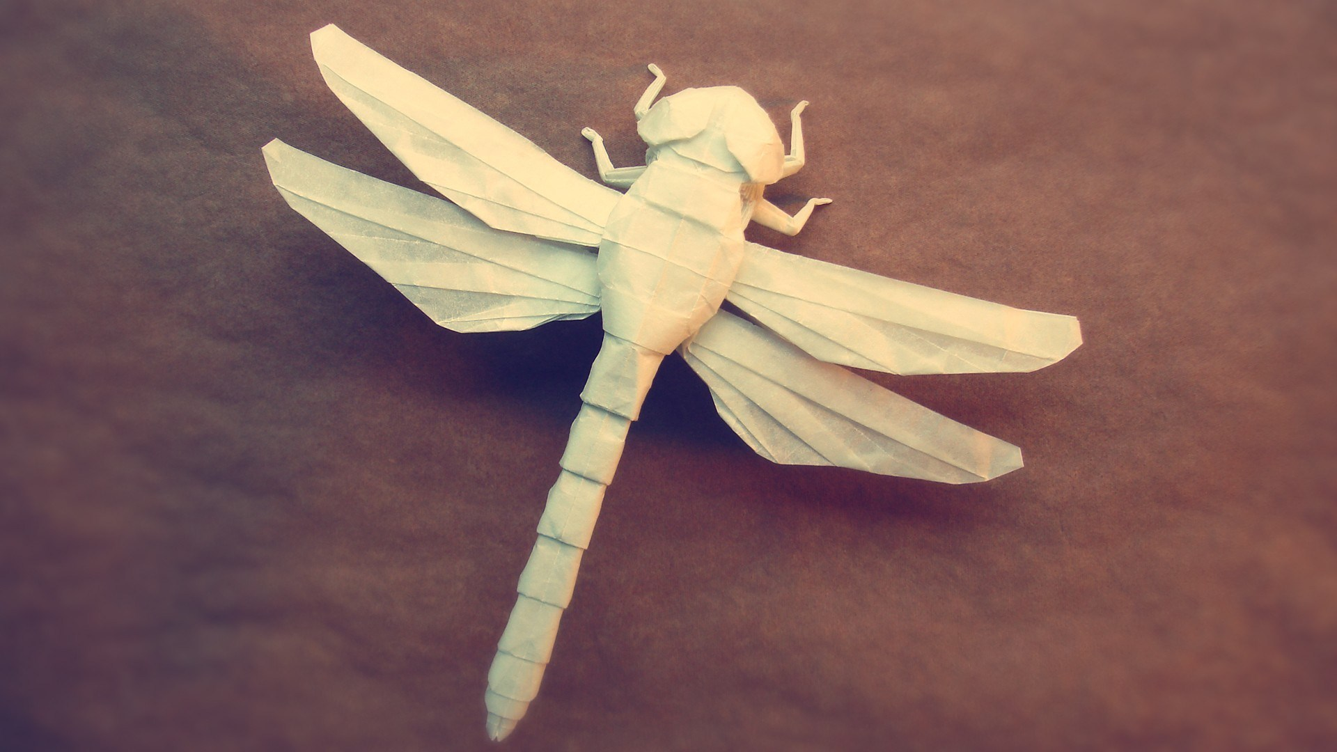 Origami Dragonfly Photo