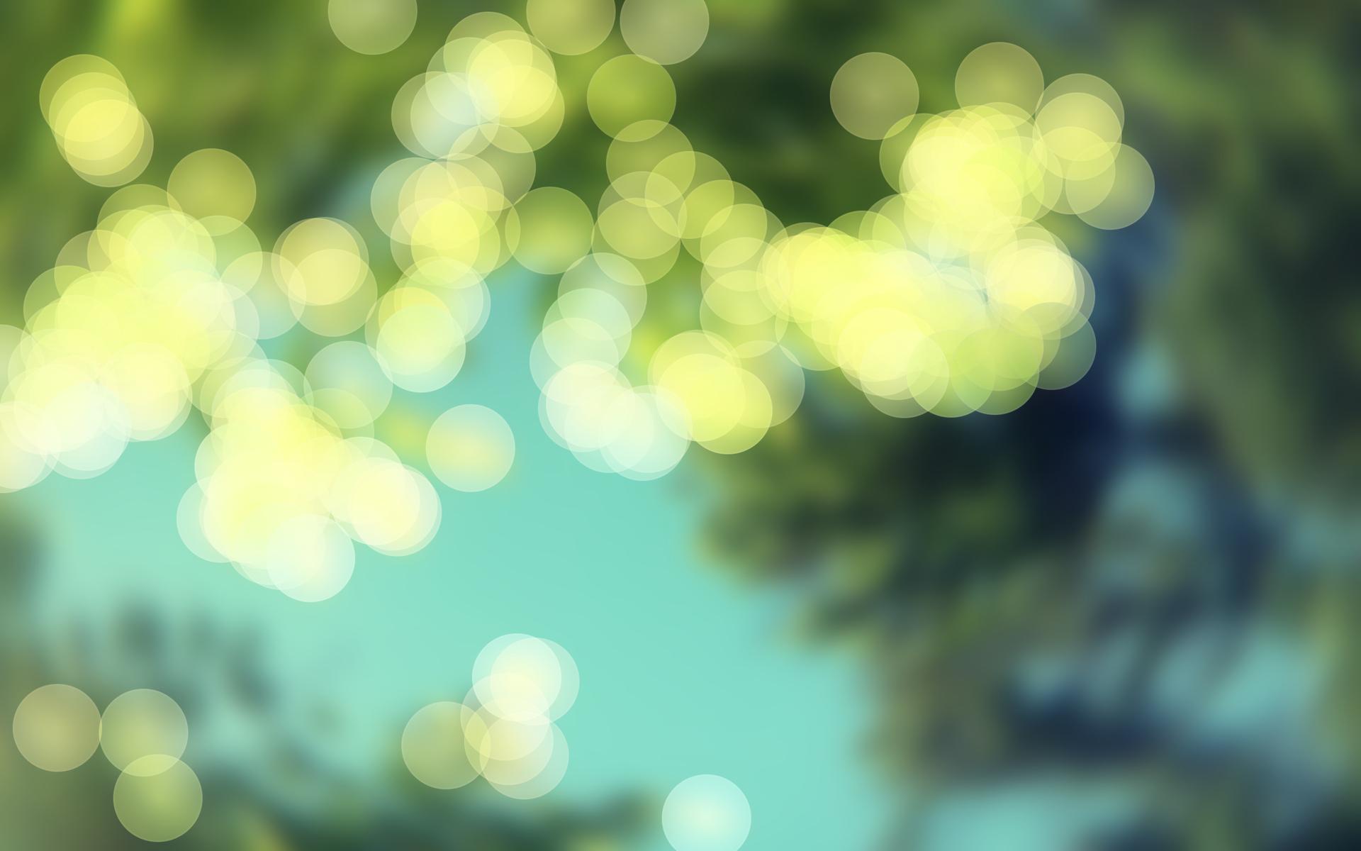 Focus Blur Wallpaper 21149