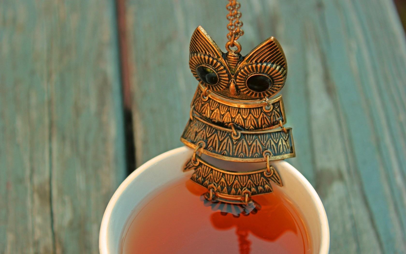 Owl Pendant Tea Drink Cup