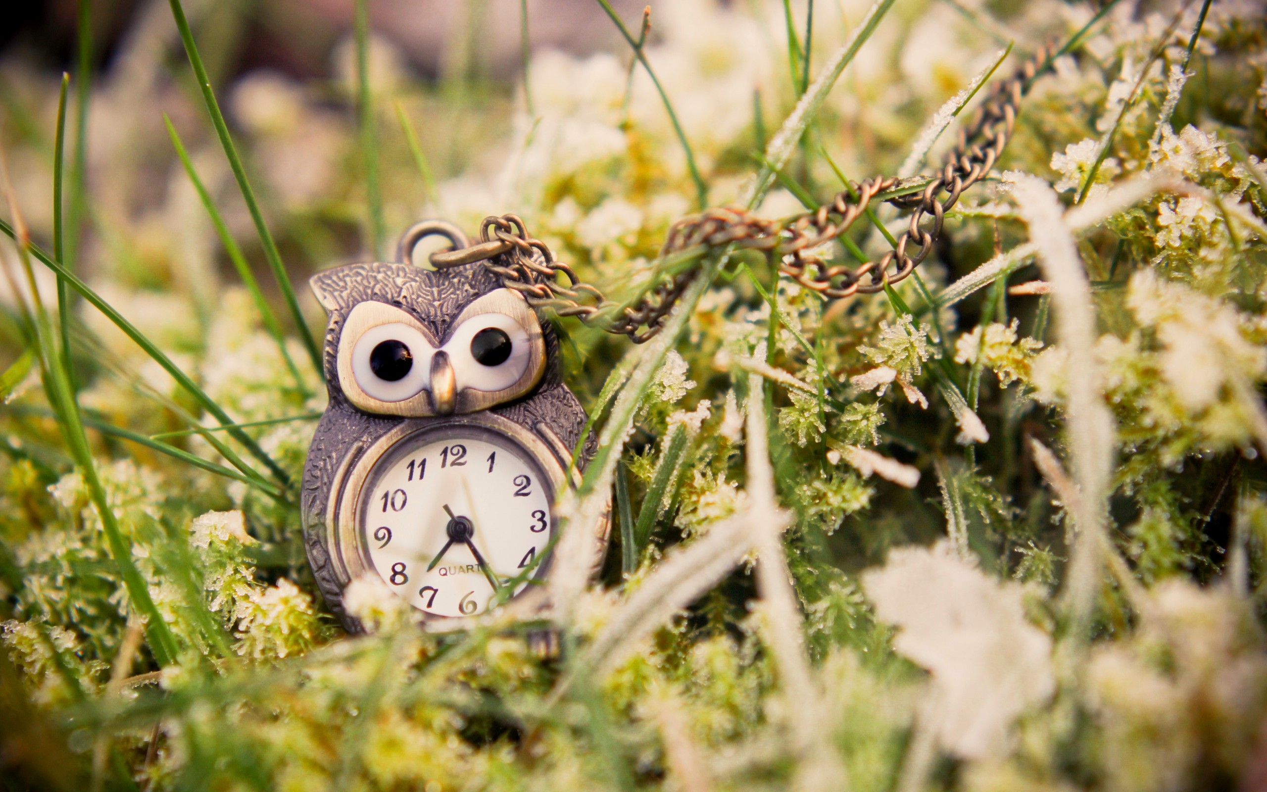 Owl Pendant Wallpaper