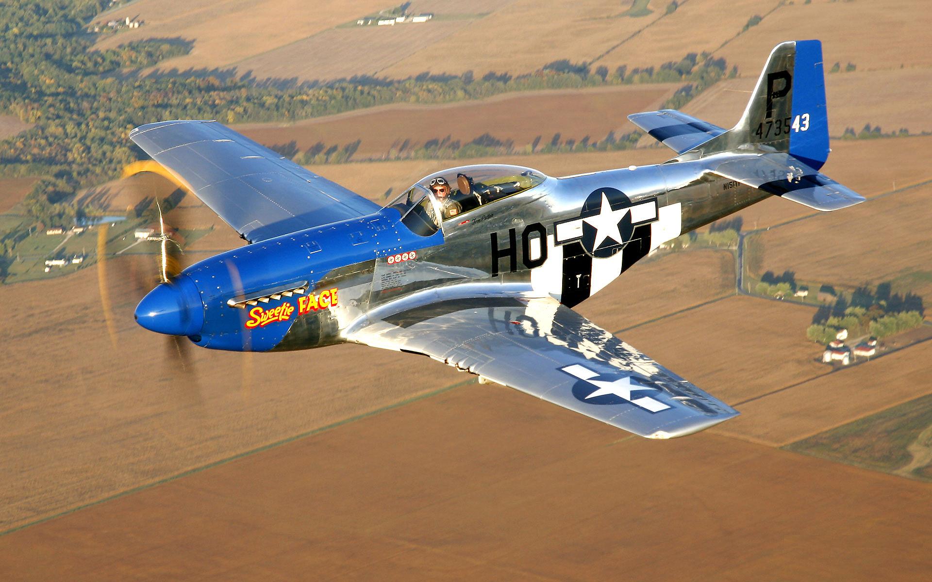 P51 Classic Airplane