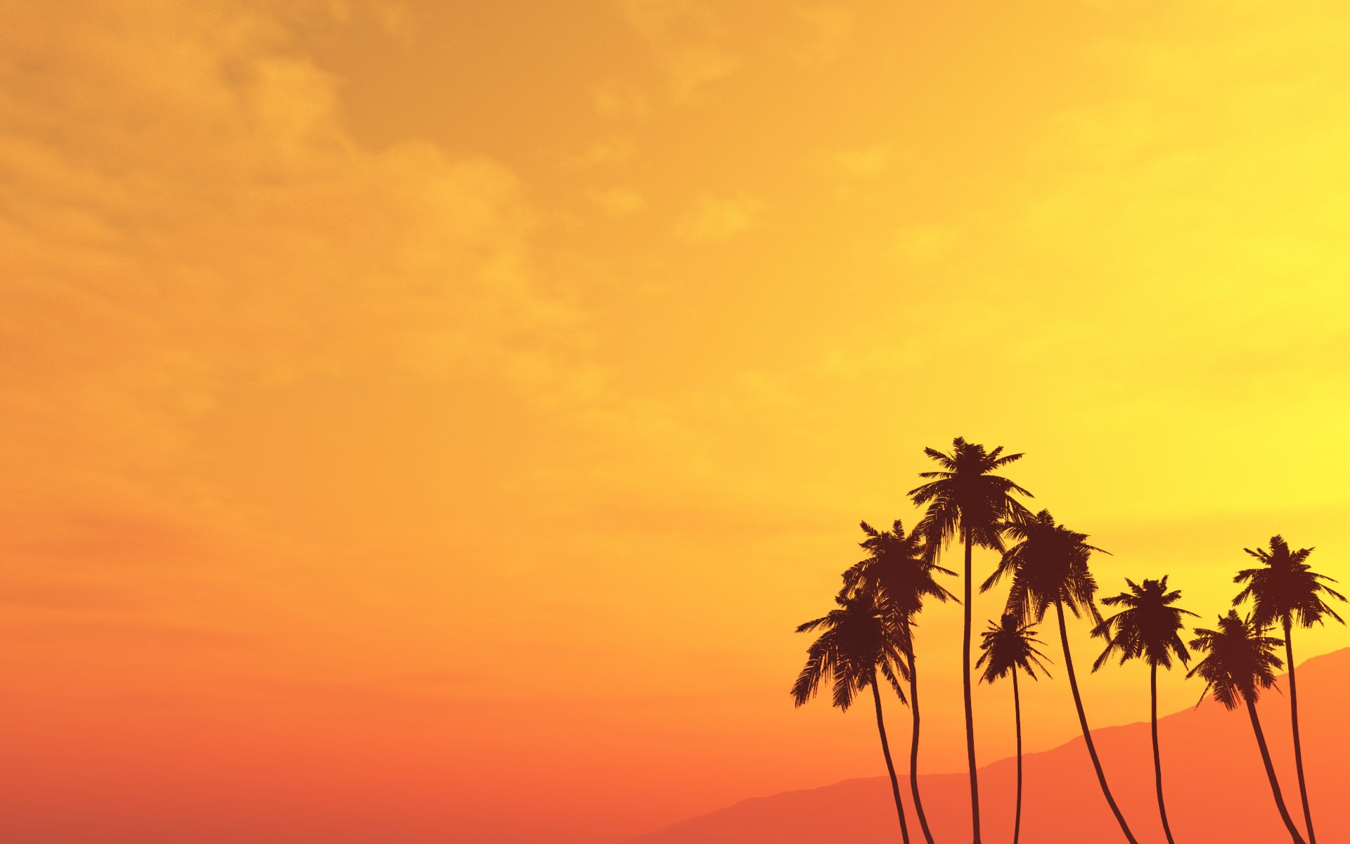 Palm Trees Wallpaper Widescreen