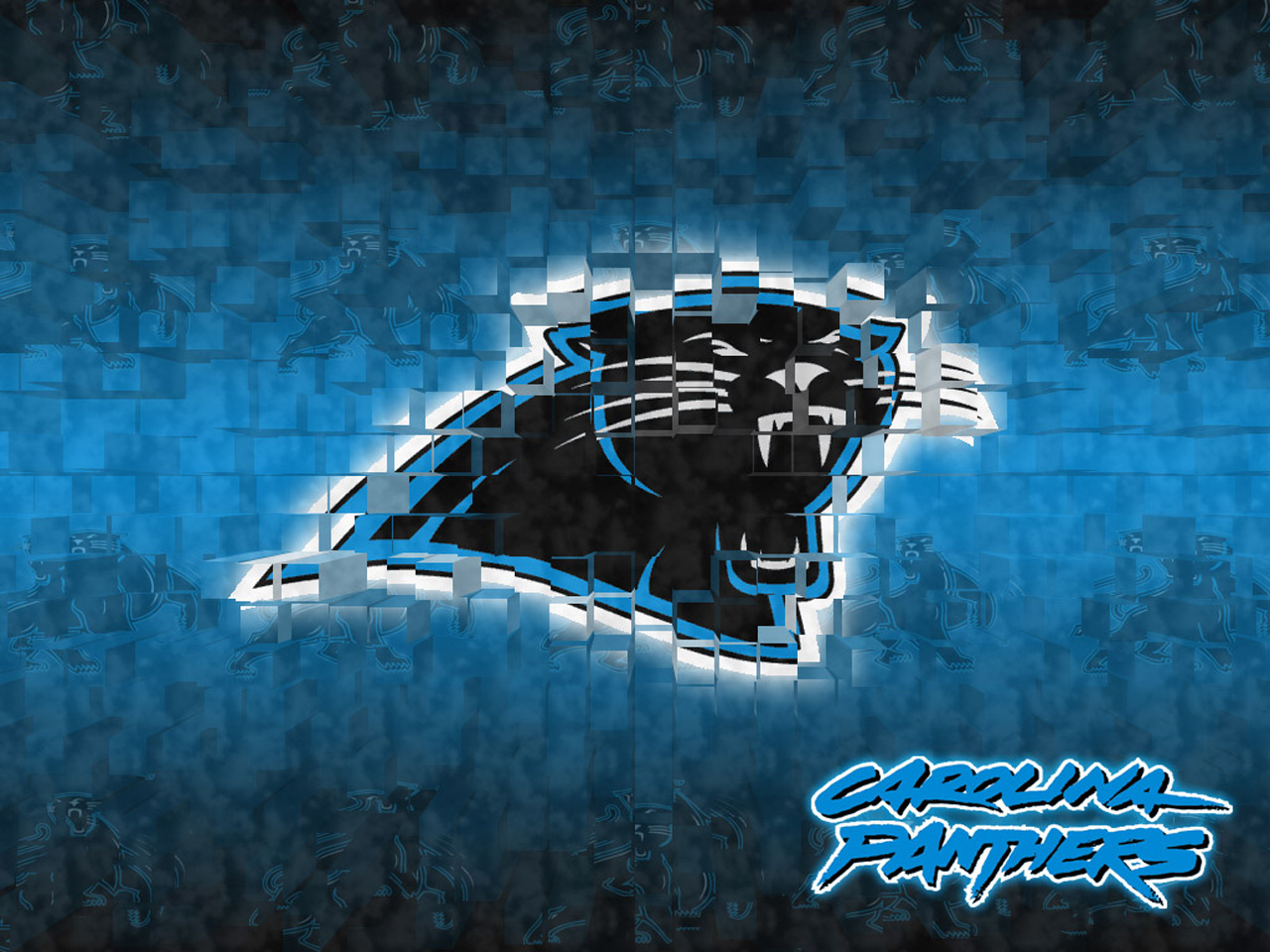 Panthers Wallpaper