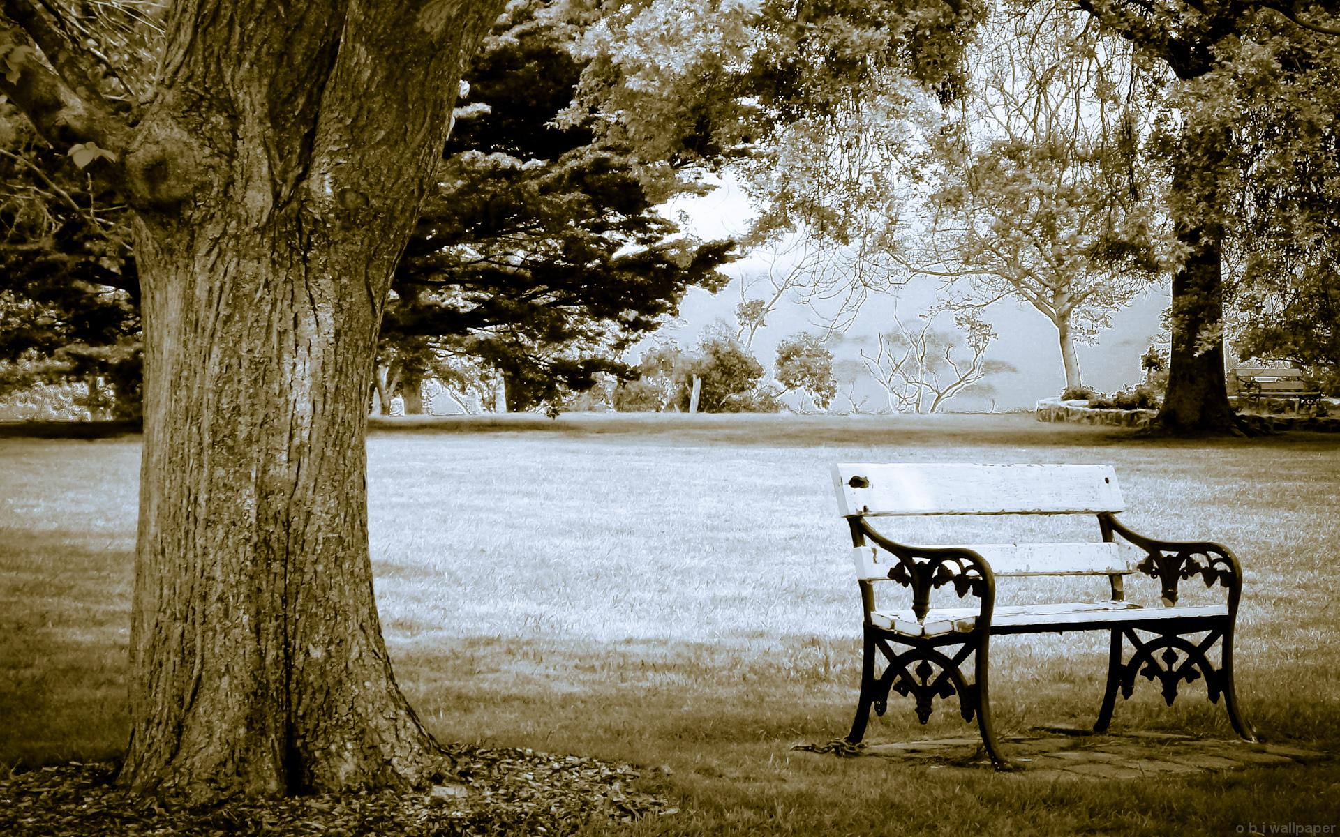 park bench wallpaper images photos 0323025650