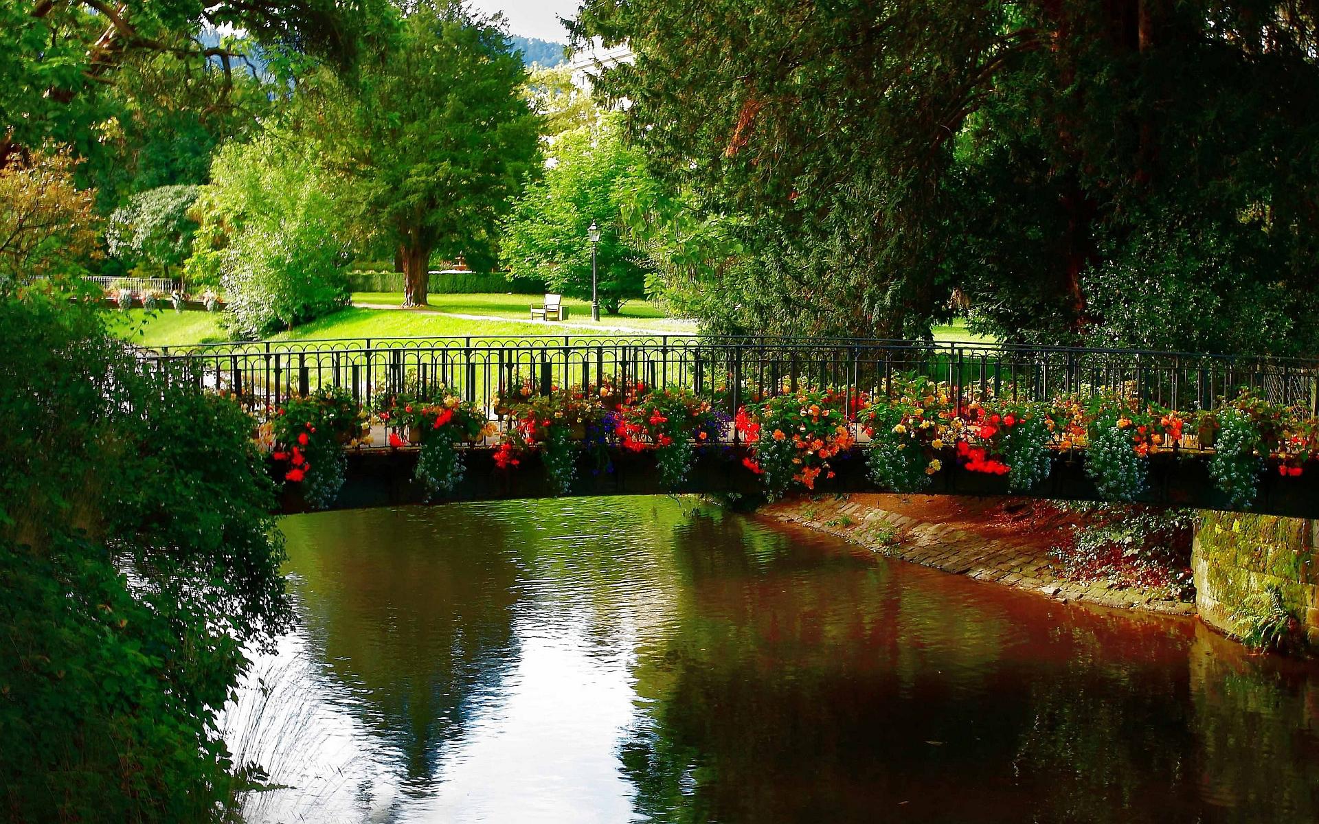 Park bridge flowers