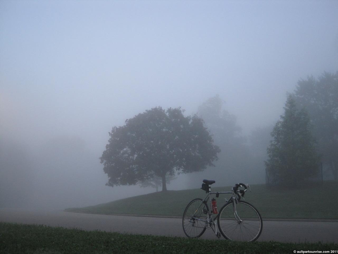 Sunrise 98: Ault Park (Foggy Park, Foggy Forest, and Observatory Fog)