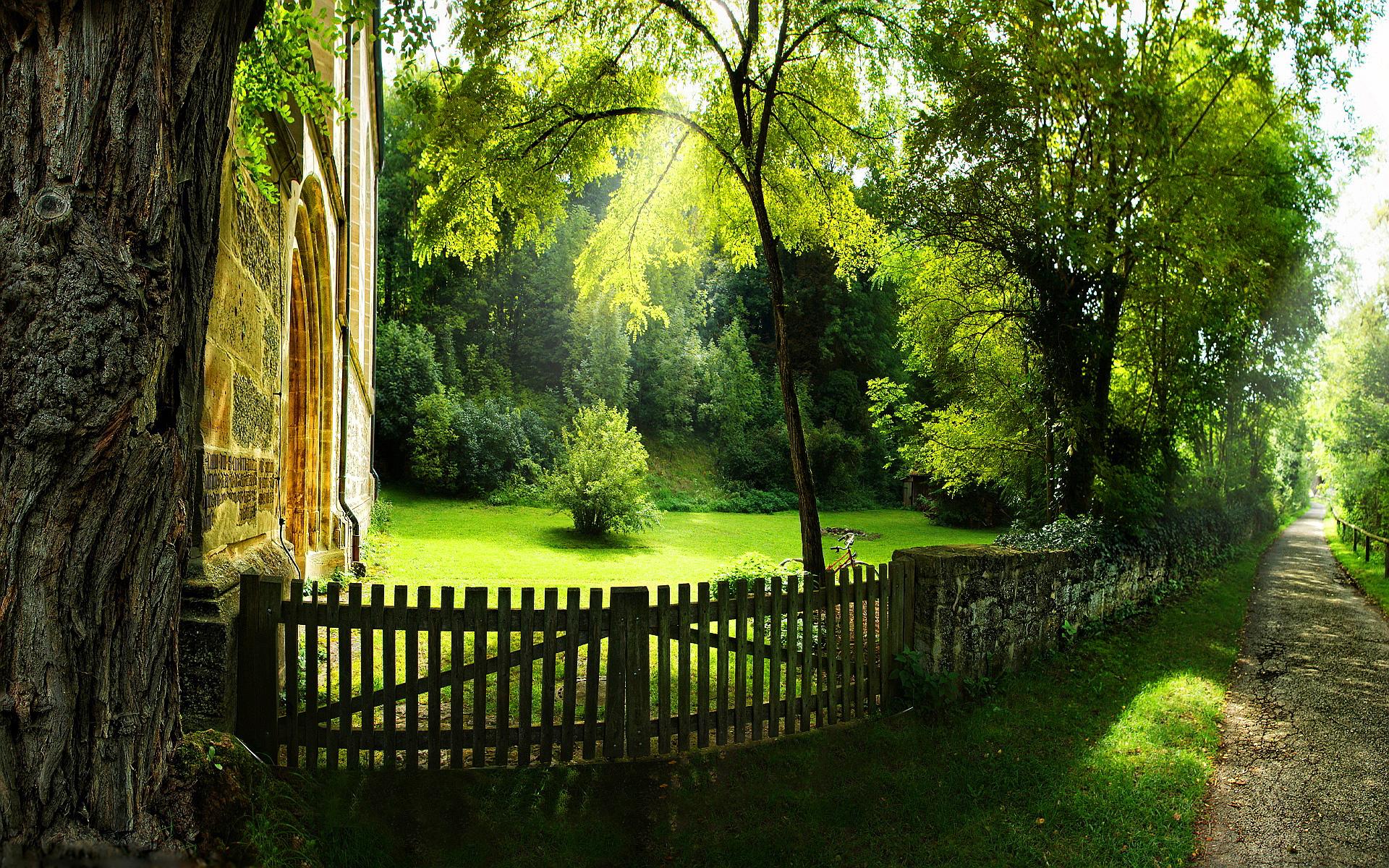 Pathway summer garden