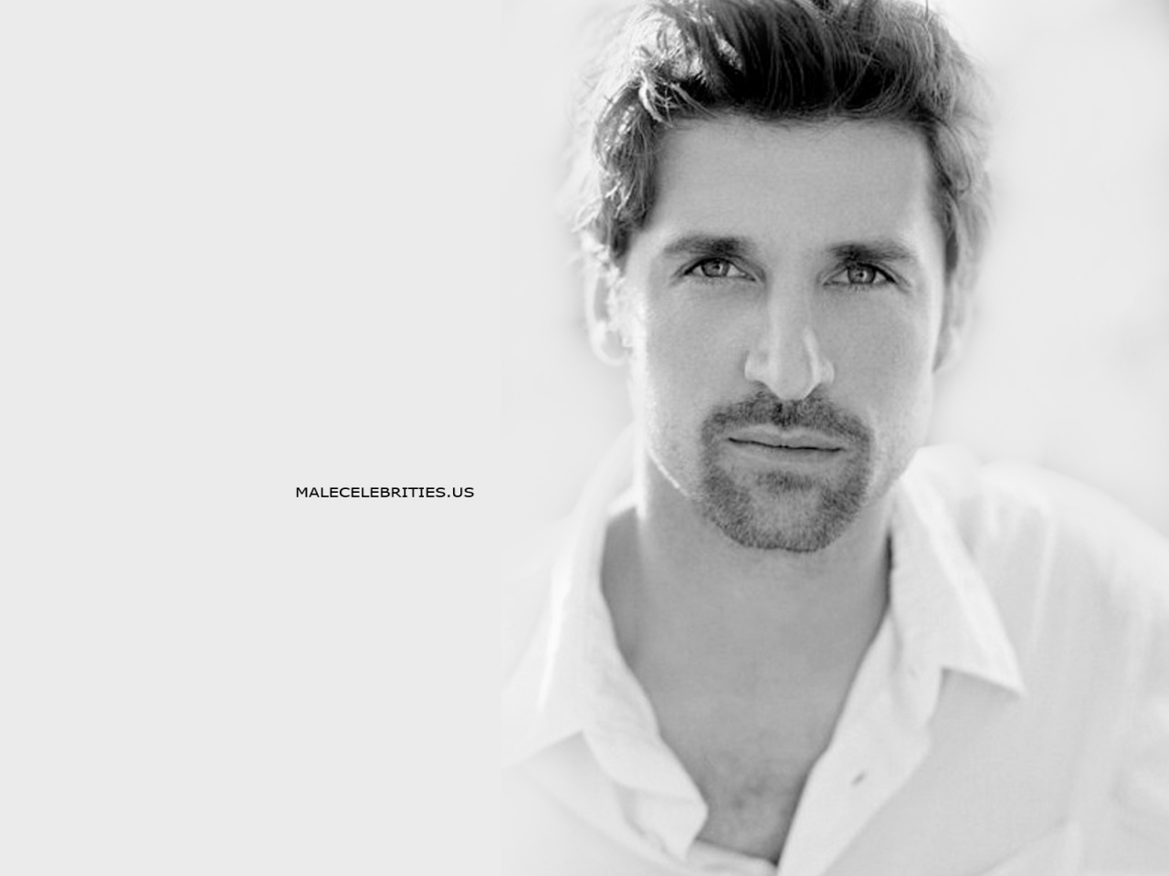Grey's Anatomy Actors Patrick Dempsey wallpapers