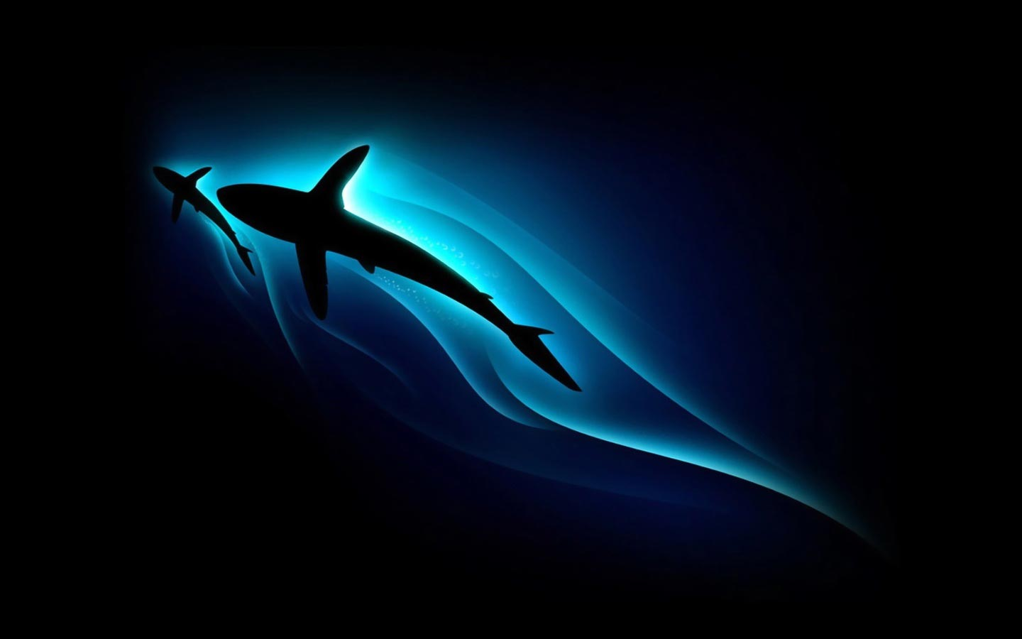 Desktop Wallpaper Gallery Windows Shark Pc Background