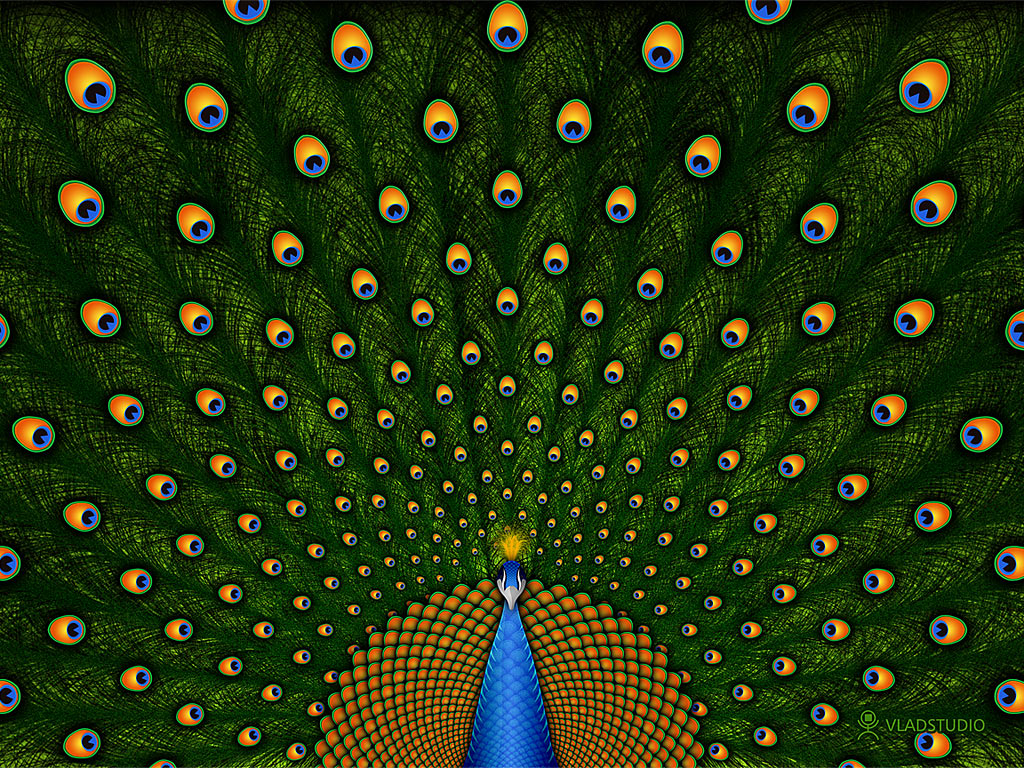 ... Green Peacock Wallpaper 03