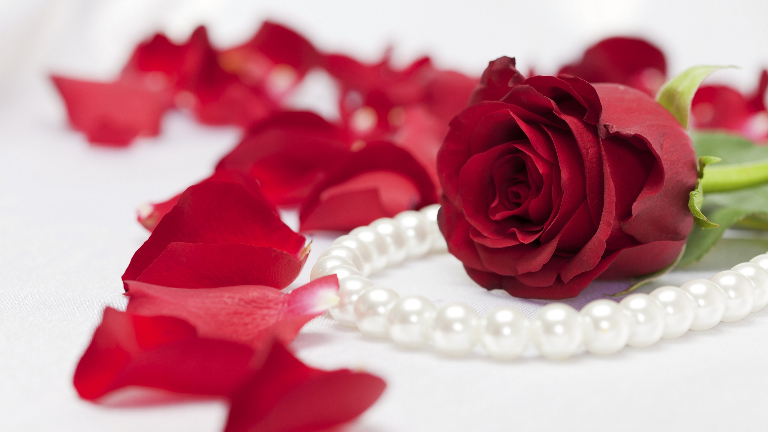 Pearl necklace red rose