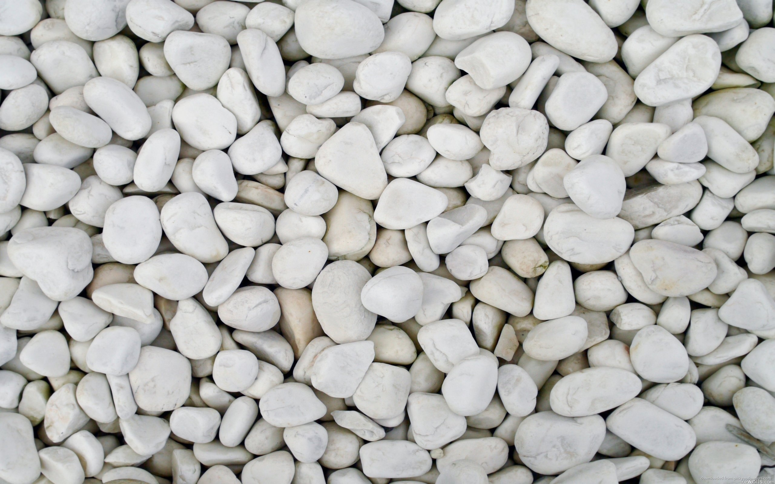... White Pebbles for 2560x1600