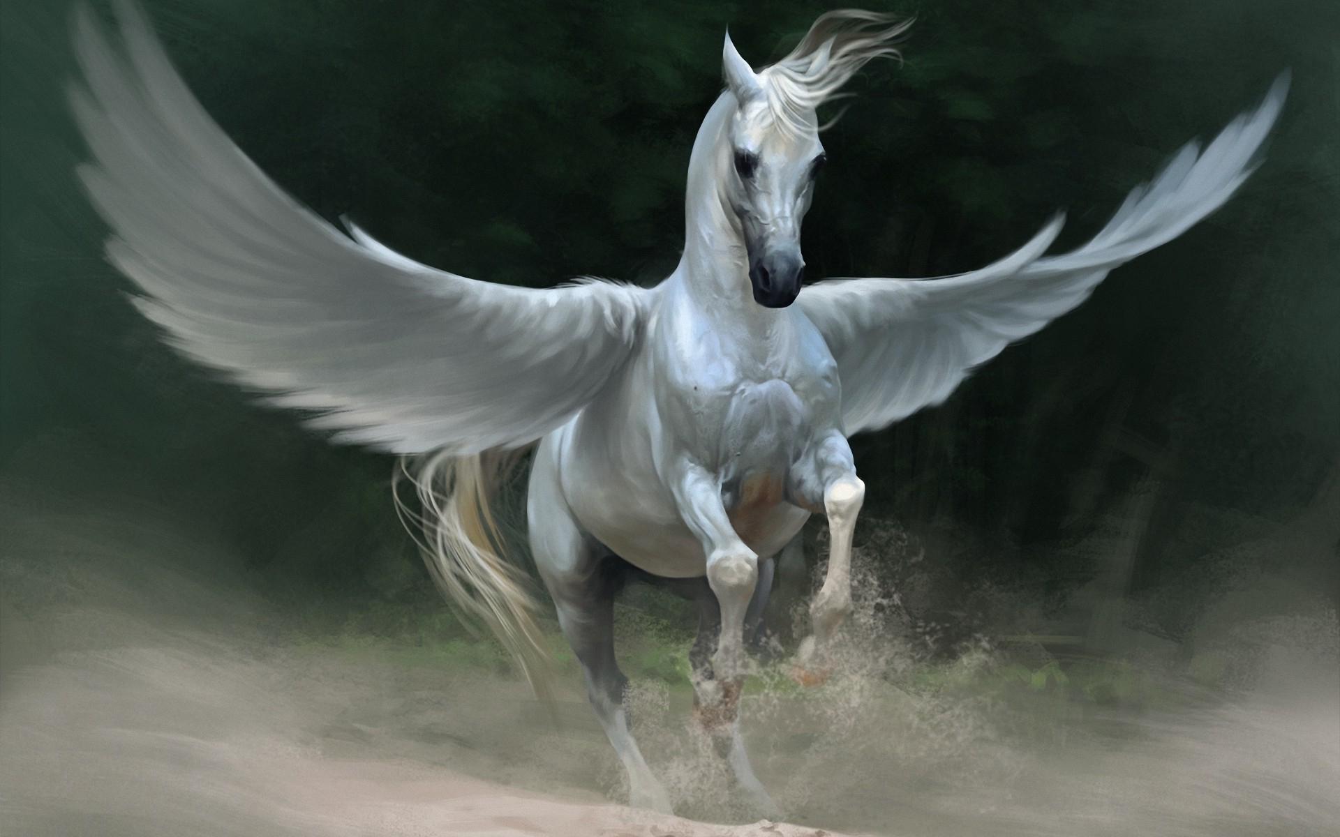 Pegasus horse