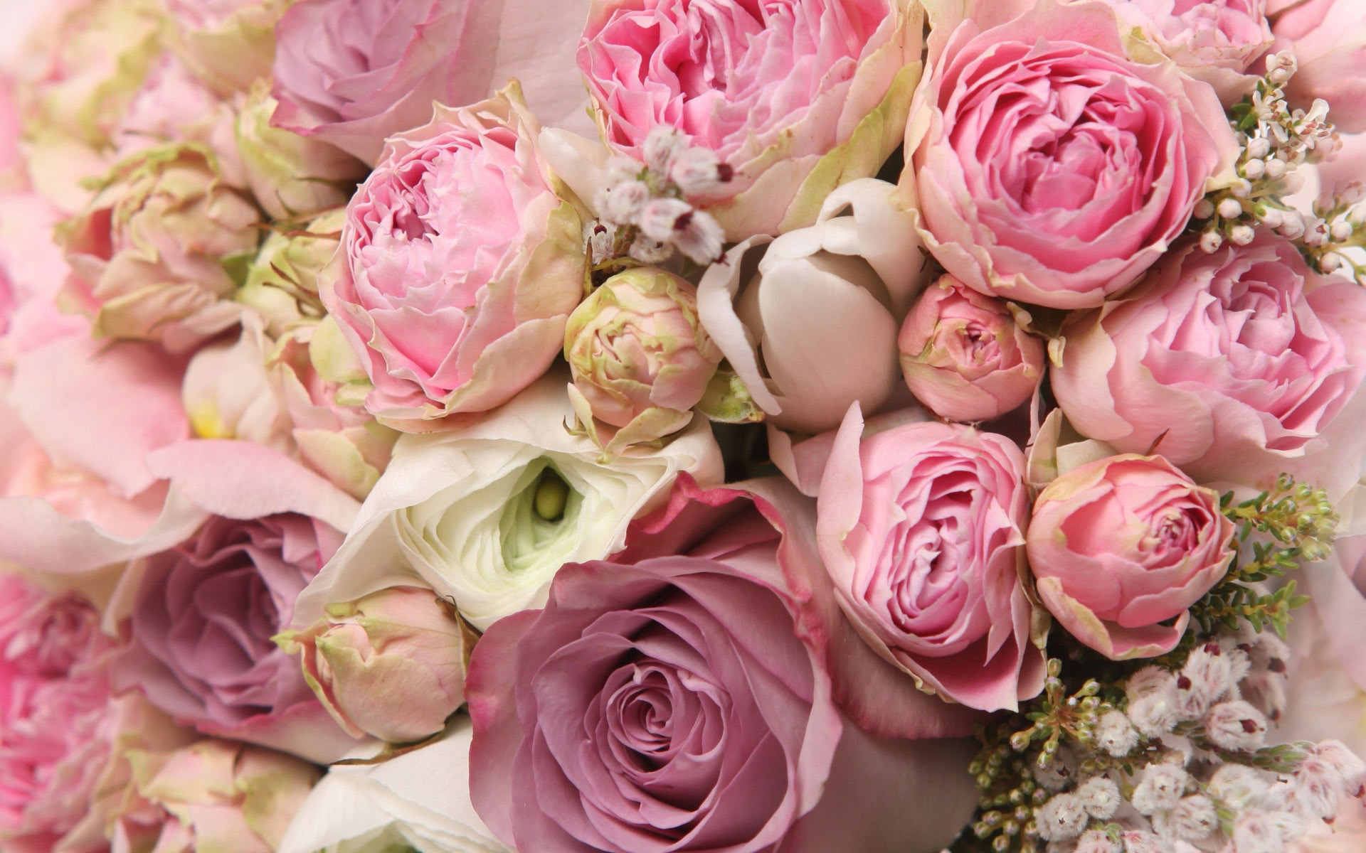 Roses and peonies bouquet wallpaper