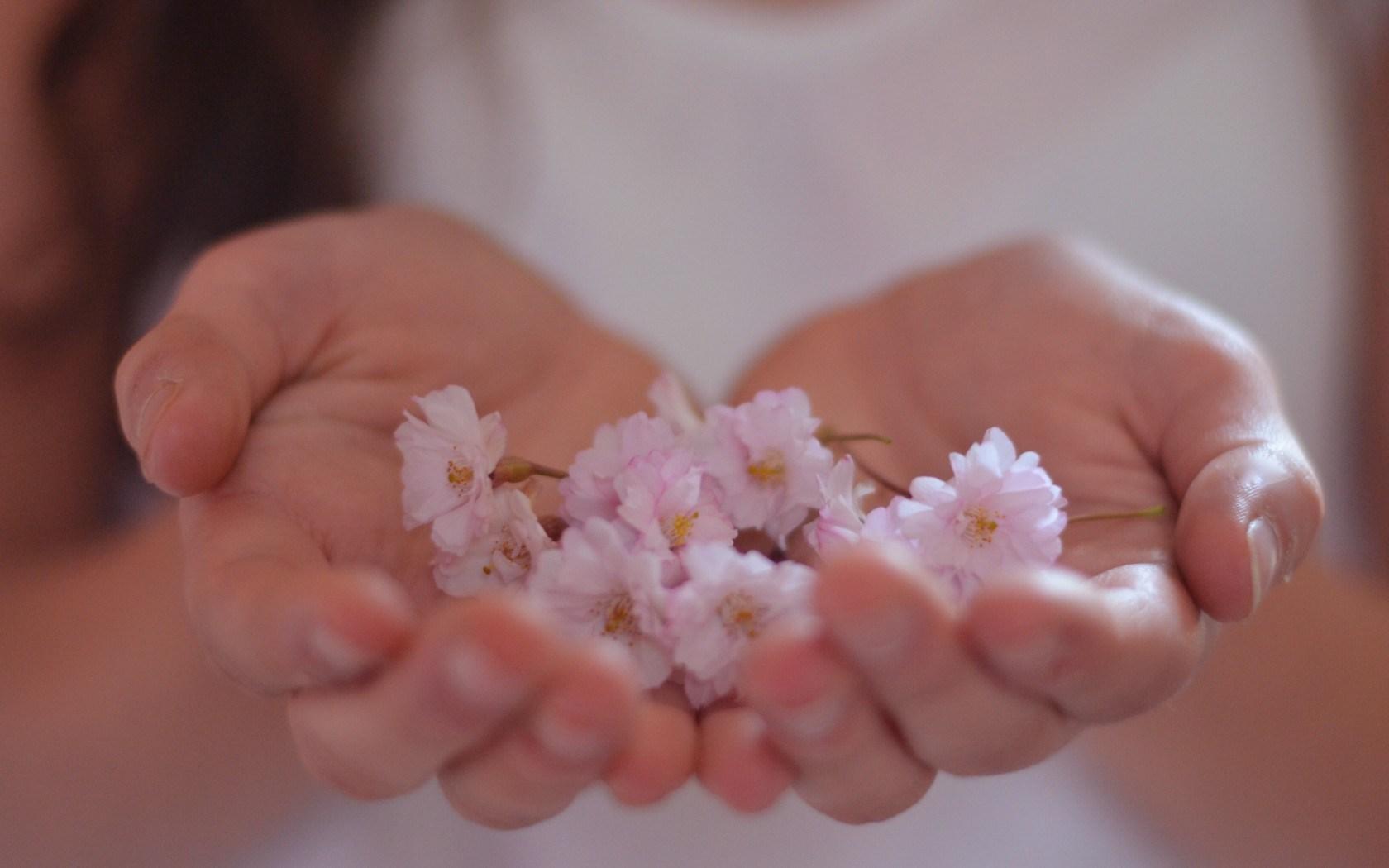Photo Girl Hands Flowers
