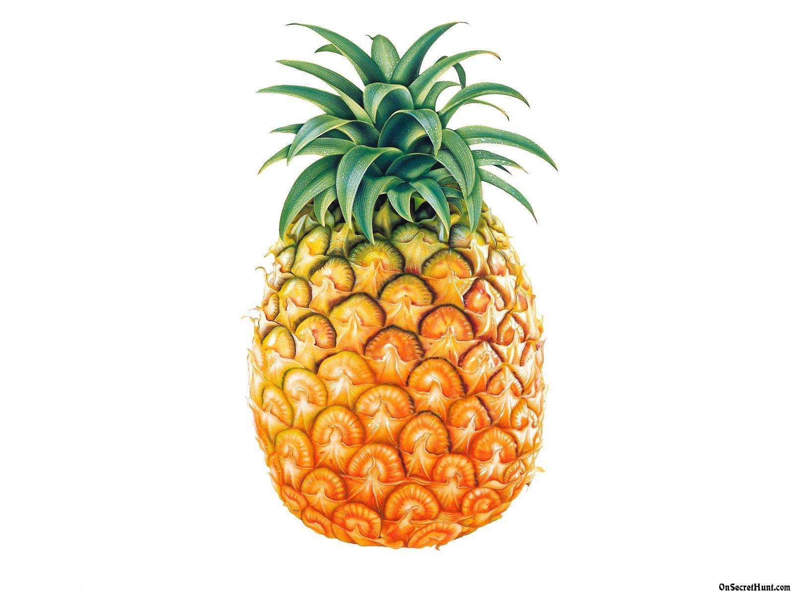 pineapple%20wallpaper%20tumblr