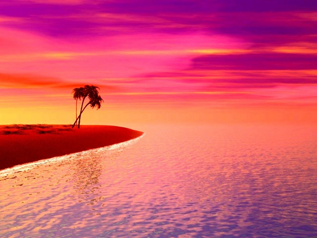 Pink Beach Sunset Wallpapers